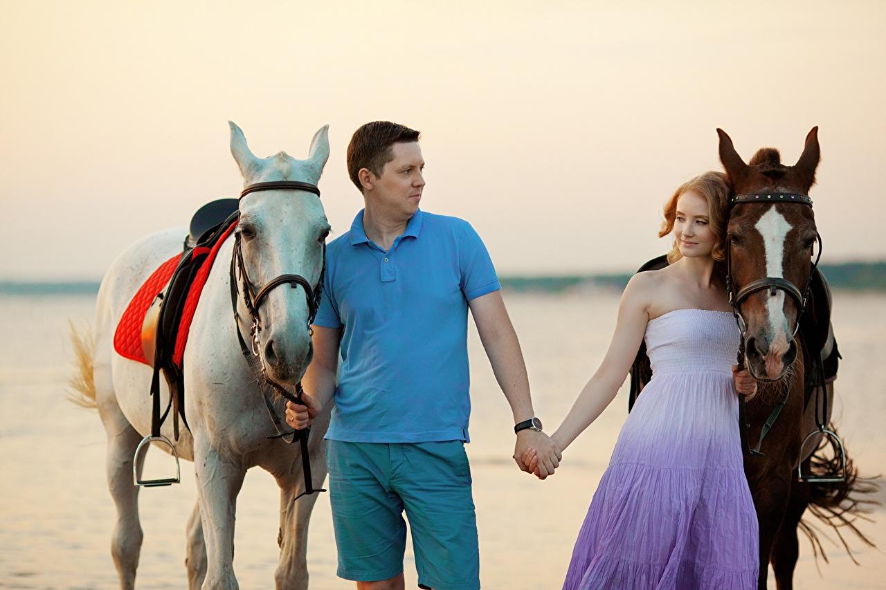 Desktop Hintergrundbilder ein Tier Pferde Mann Paare in der Liebe Romantisches date Mädchens Kleid Tiere Pferd Hauspferd auf ein datum date junge frau junge Frauen