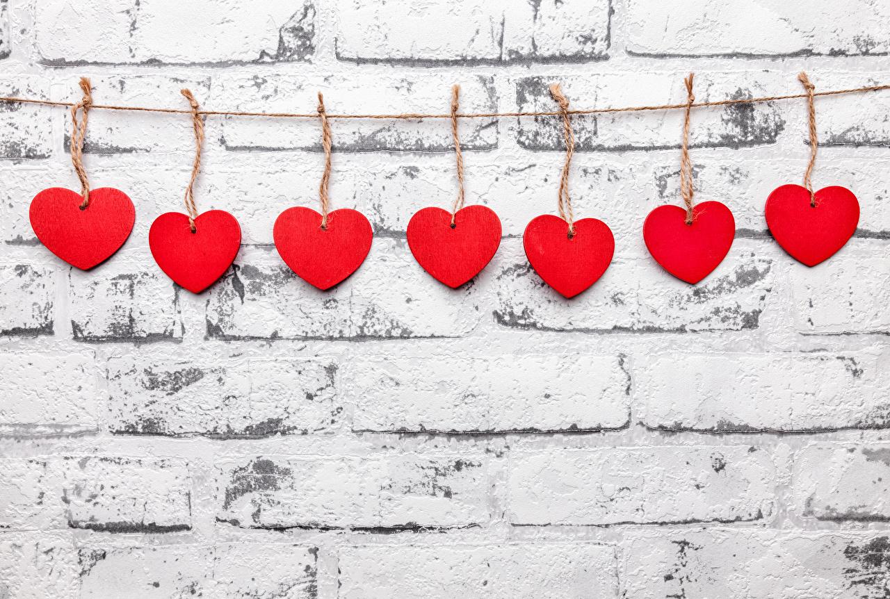 Bilder Alla hjärtans dag Hjärta Röd Vägg väggar