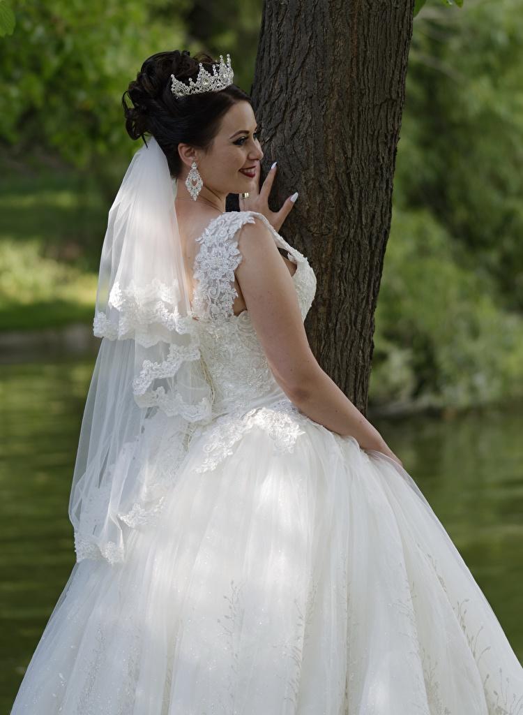 Foto Krone Braut Hochzeit Brünette Lächeln junge Frauen Kleid Schmuck  für Handy Ehe Heirat bräute Trauung Hochzeiten Mädchens junge frau