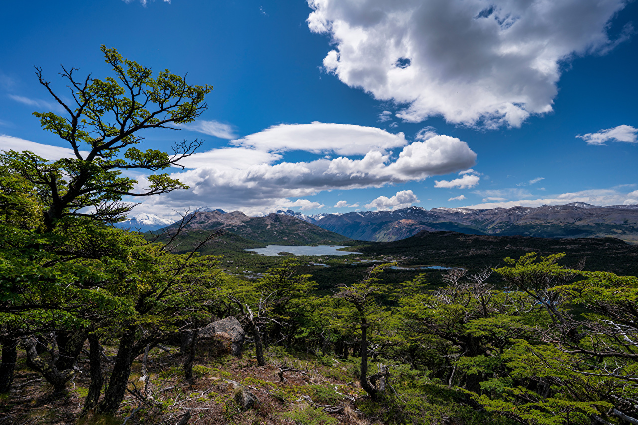 Pictures Argentina El Chalten, Patagonia Nature Mountains Sky Trees Clouds mountain
