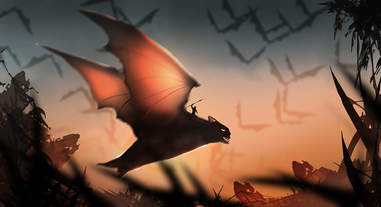 Photos Bats Warriors Wings Fantasy Magical animals warrior