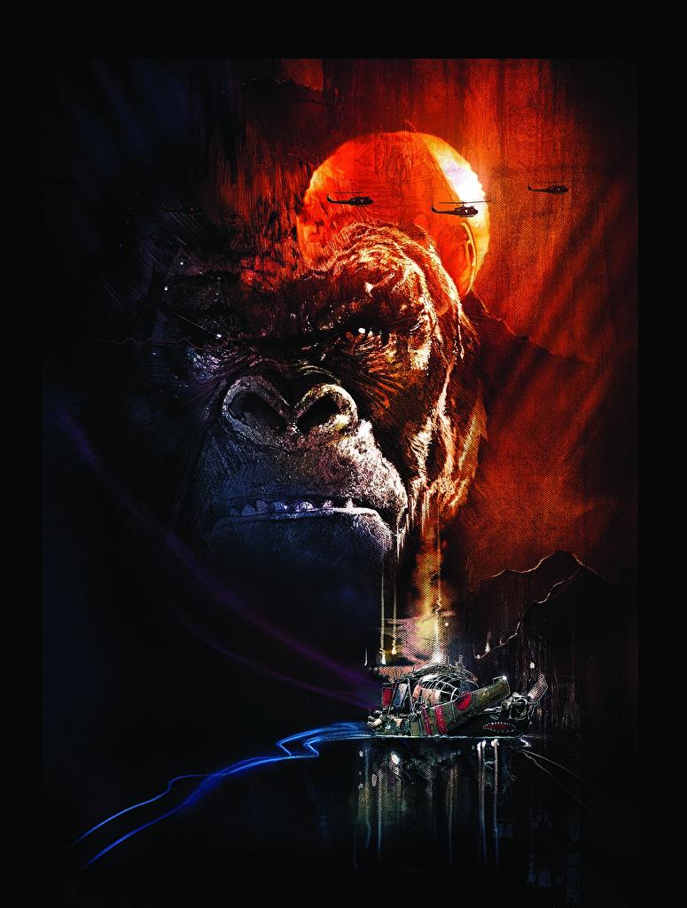Image Kong: Skull Island Monkeys Movies Snout  for Mobile phone monkey film