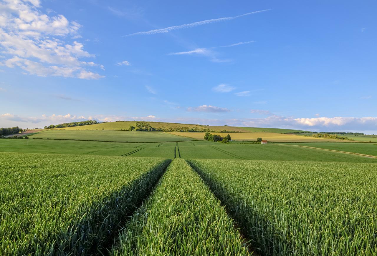 Hintergrundbilder England Natur Himmel Felder Acker