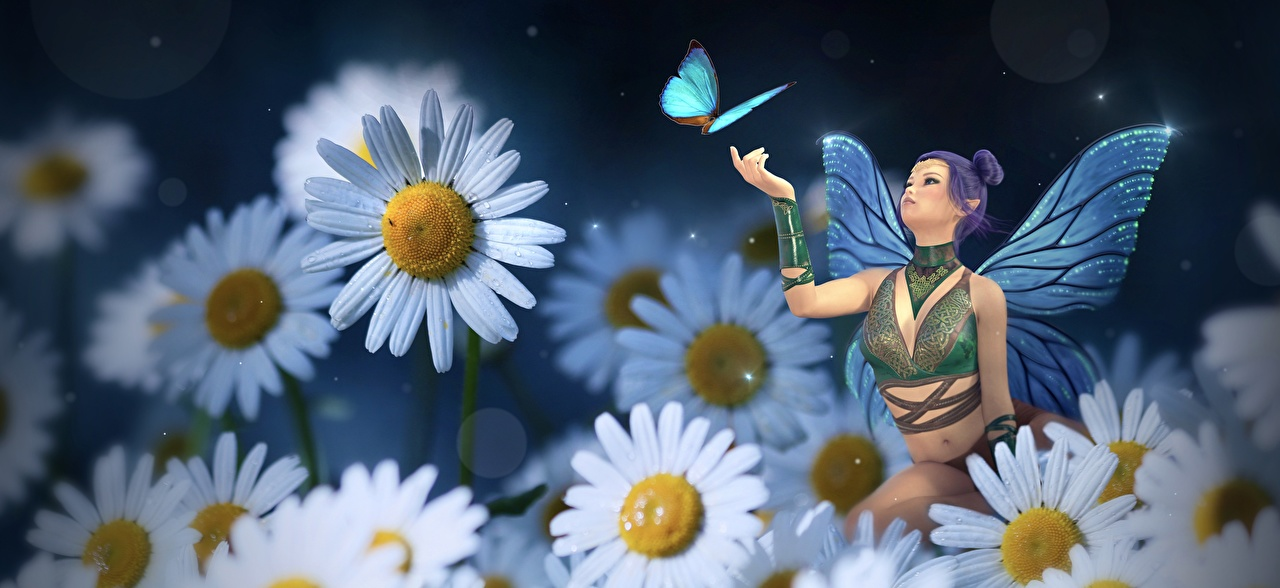 Desktop Wallpapers Fairy butterfly female Fantasy 3D Graphics matricaria Fairies Butterflies Girls young woman Camomiles