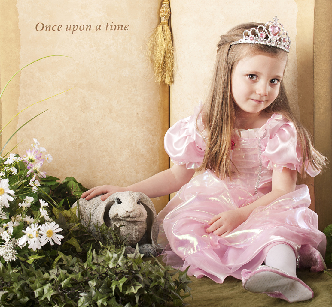 Pictures Little girls Rabbits Crown child gown rabbit Children frock Dress