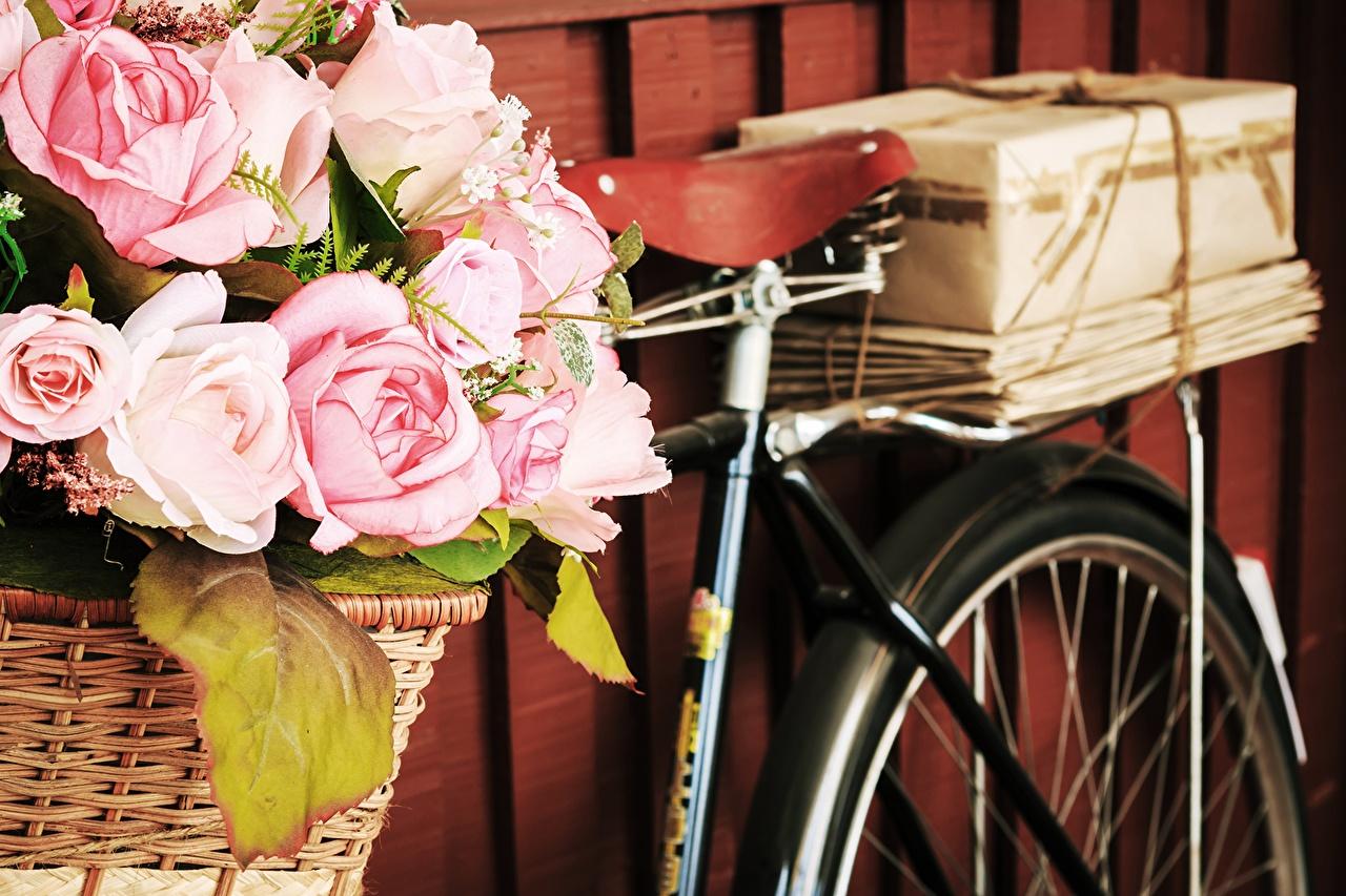 Desktop Wallpapers Bicycle Roses Box flower Wicker basket bike bicycles rose Flowers