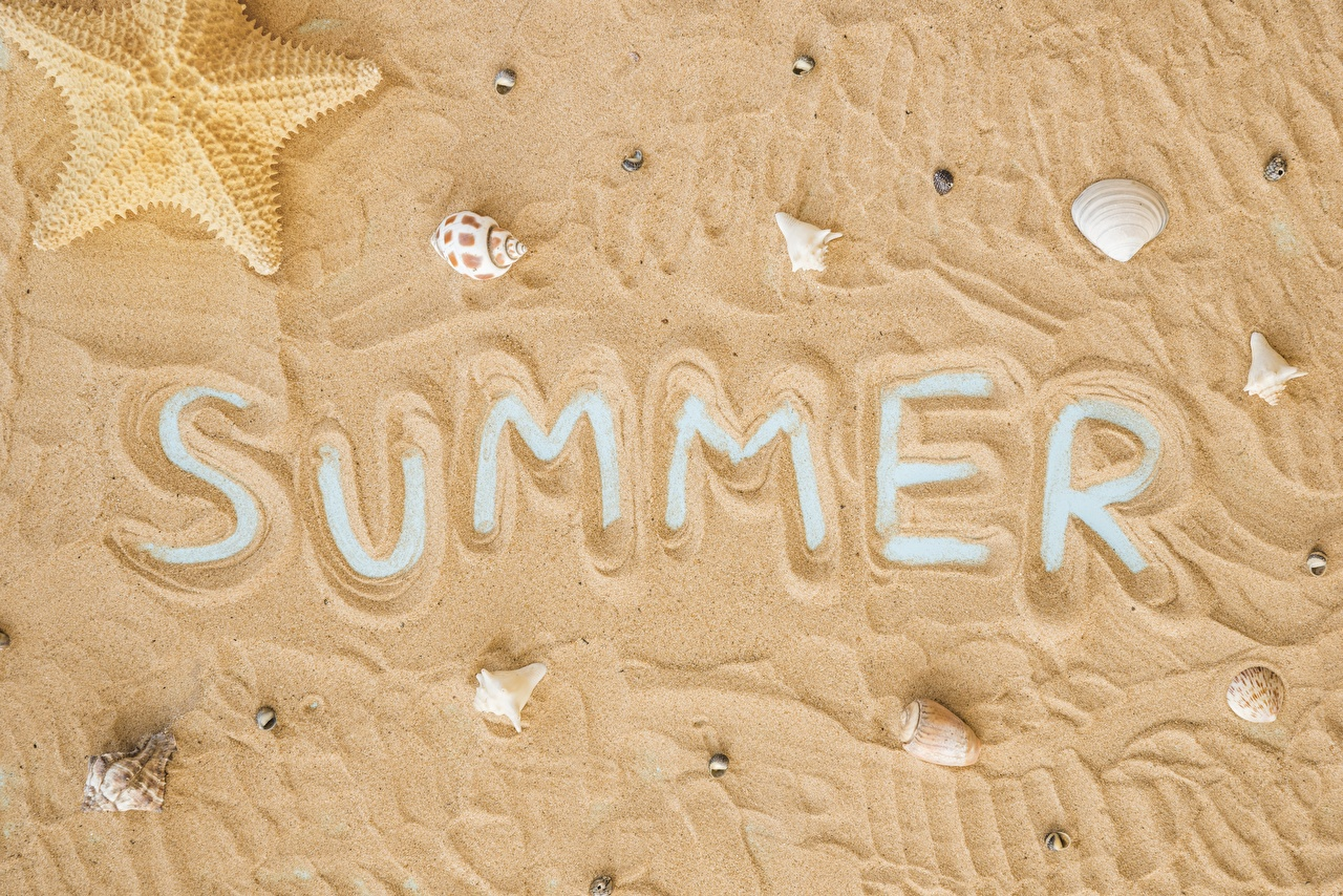 Desktop Wallpapers English Summer Sand Shells lettering text Word - Lettering