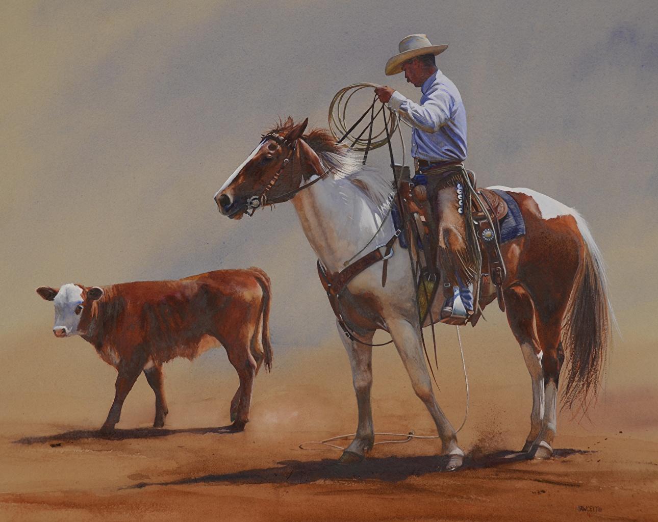 Desktop Wallpapers Horses Cowboy John Fawcett Sixty Feet Of Rope