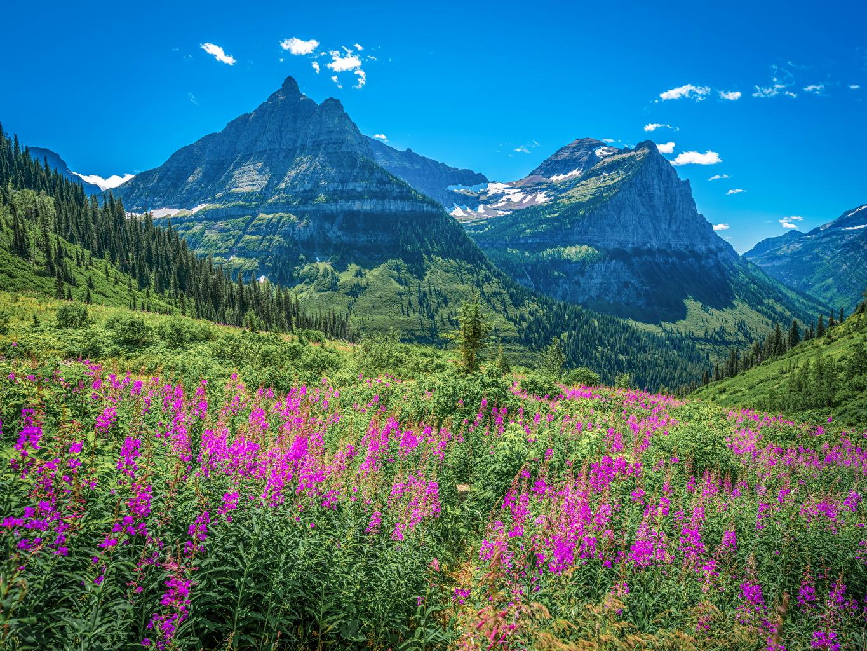 Fotos USA Glacier National Park, Montana Natur Gebirge Parks Landschaftsfotografie Vereinigte Staaten Berg Park