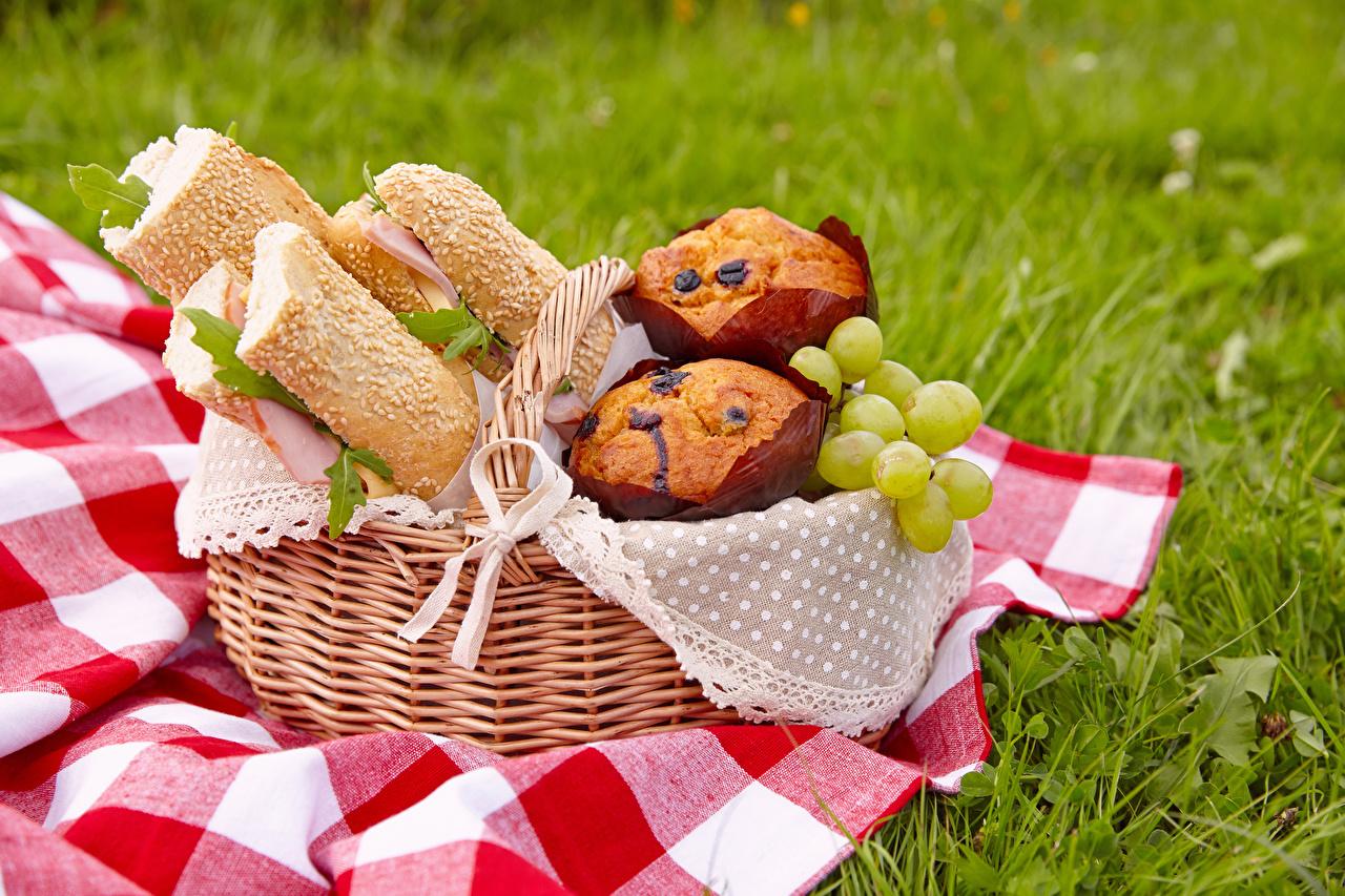 Desktop Hintergrundbilder Lebensmittel Muffin Keks Sandwich Brot Picknick Weintraube Weidenkorb das Essen Trauben