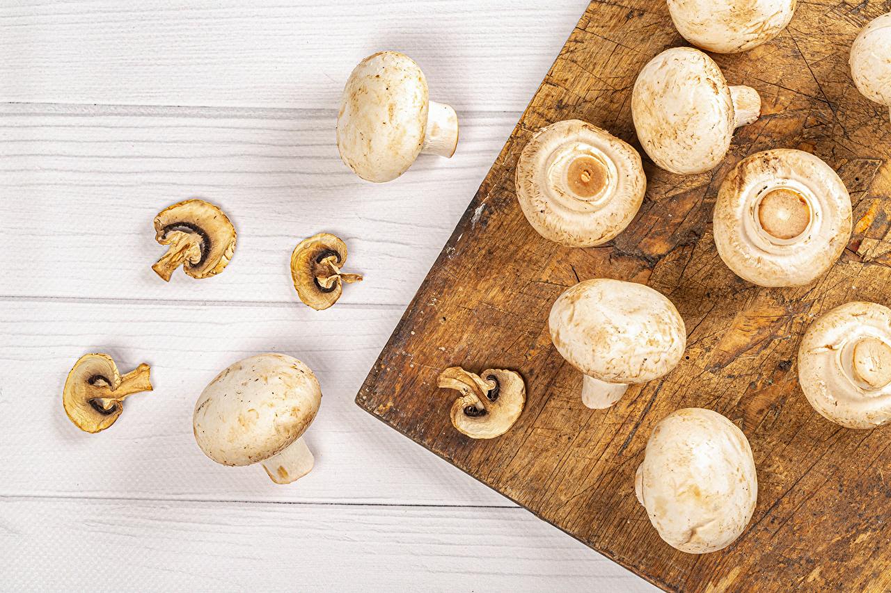 Bilder von Zucht-Champignon Pilze Lebensmittel Schneidebrett Bretter das Essen