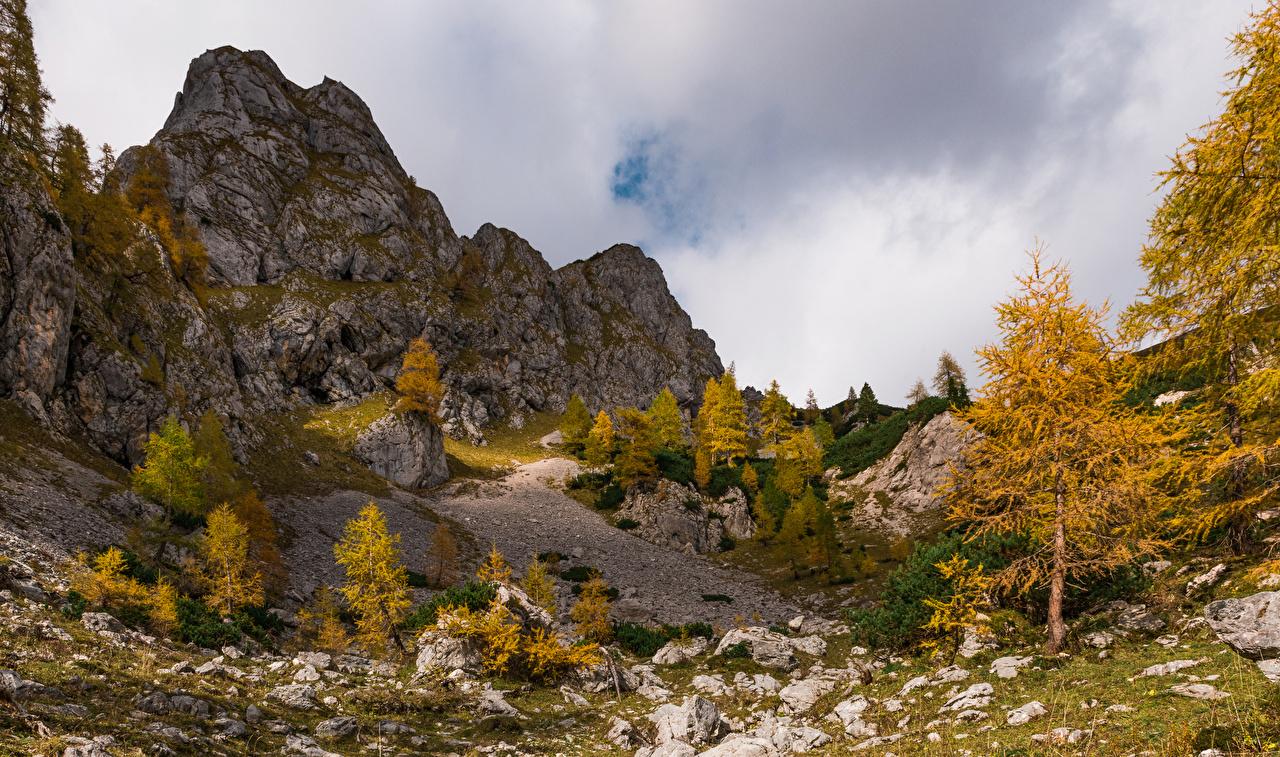 Foto Alpen Slowenien Julian Alps Natur Herbst Felsen Bäume