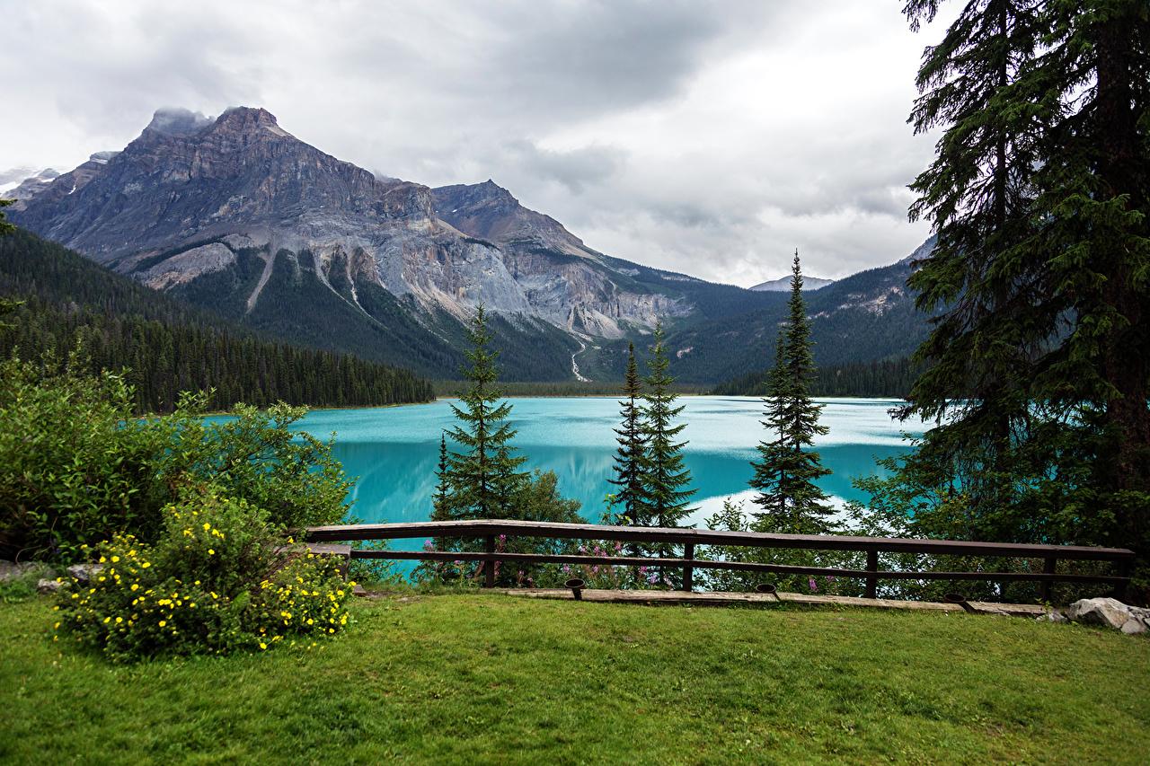 Sfondi del desktop Canada Yoho National Park Abete Natura montagna Lago Parco Paesaggio Erba Cespugli Picea Montagne parchi Arbusti