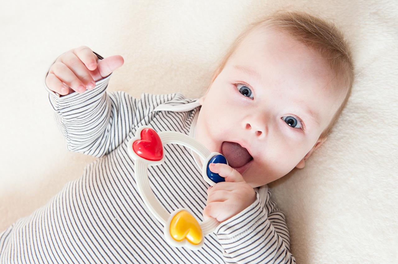Bilder von Säugling Kinder Blick Spielzeuge Baby Starren