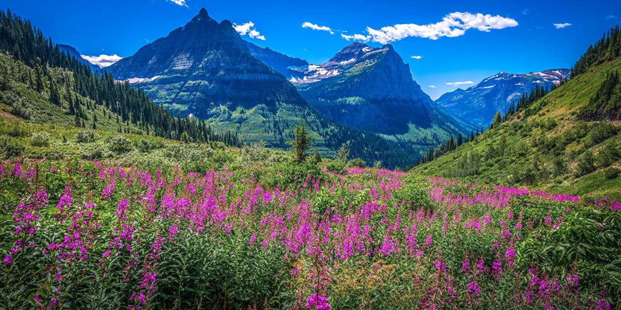 EUA Parque Montanhas Fotografia de paisagem Panorama Glacier National Park montanha, parques, Estados Unidos, panorâmica Naturaleza