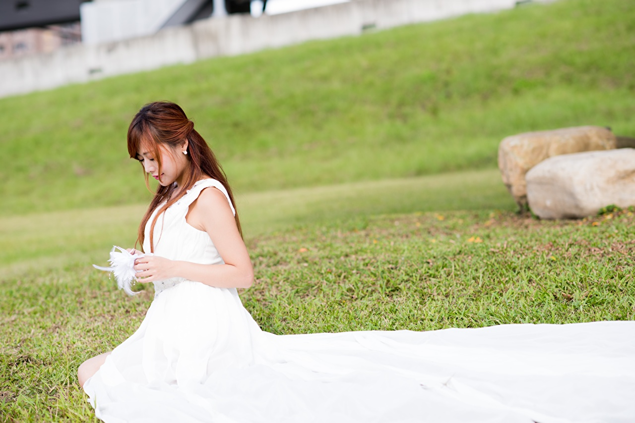 Photos Bride Brown haired Girls Asian sit Grass gown brides female young woman Asiatic Sitting frock Dress