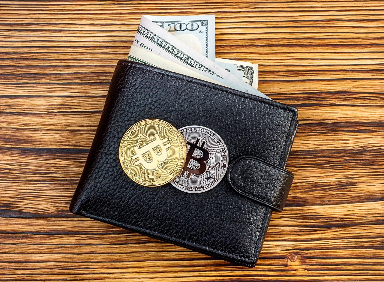 Image Coins Dollars Bitcoin Wallet Money