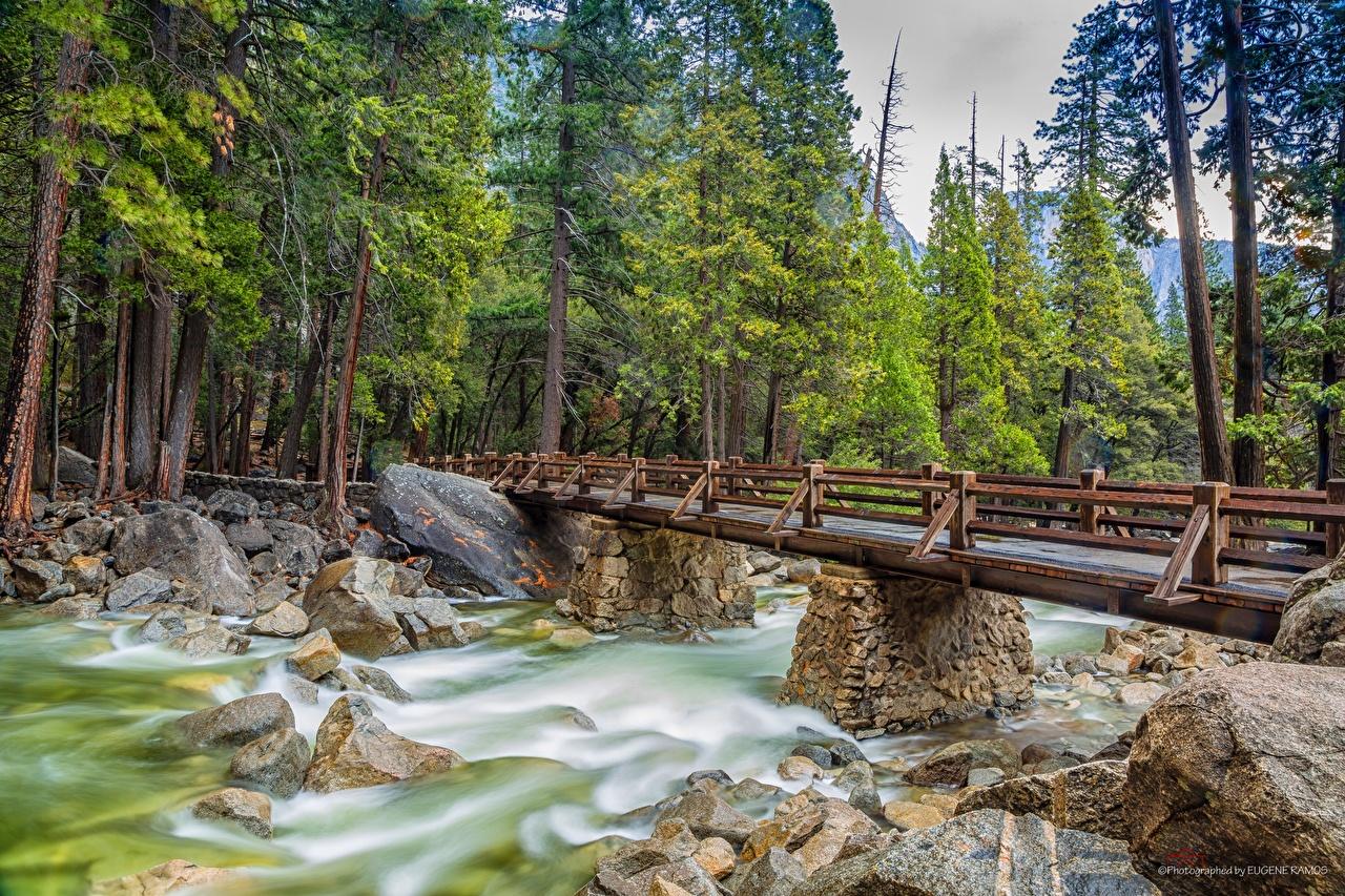 Images Yosemite California USA bridge Nature park stone Rivers Trees Bridges Parks river Stones