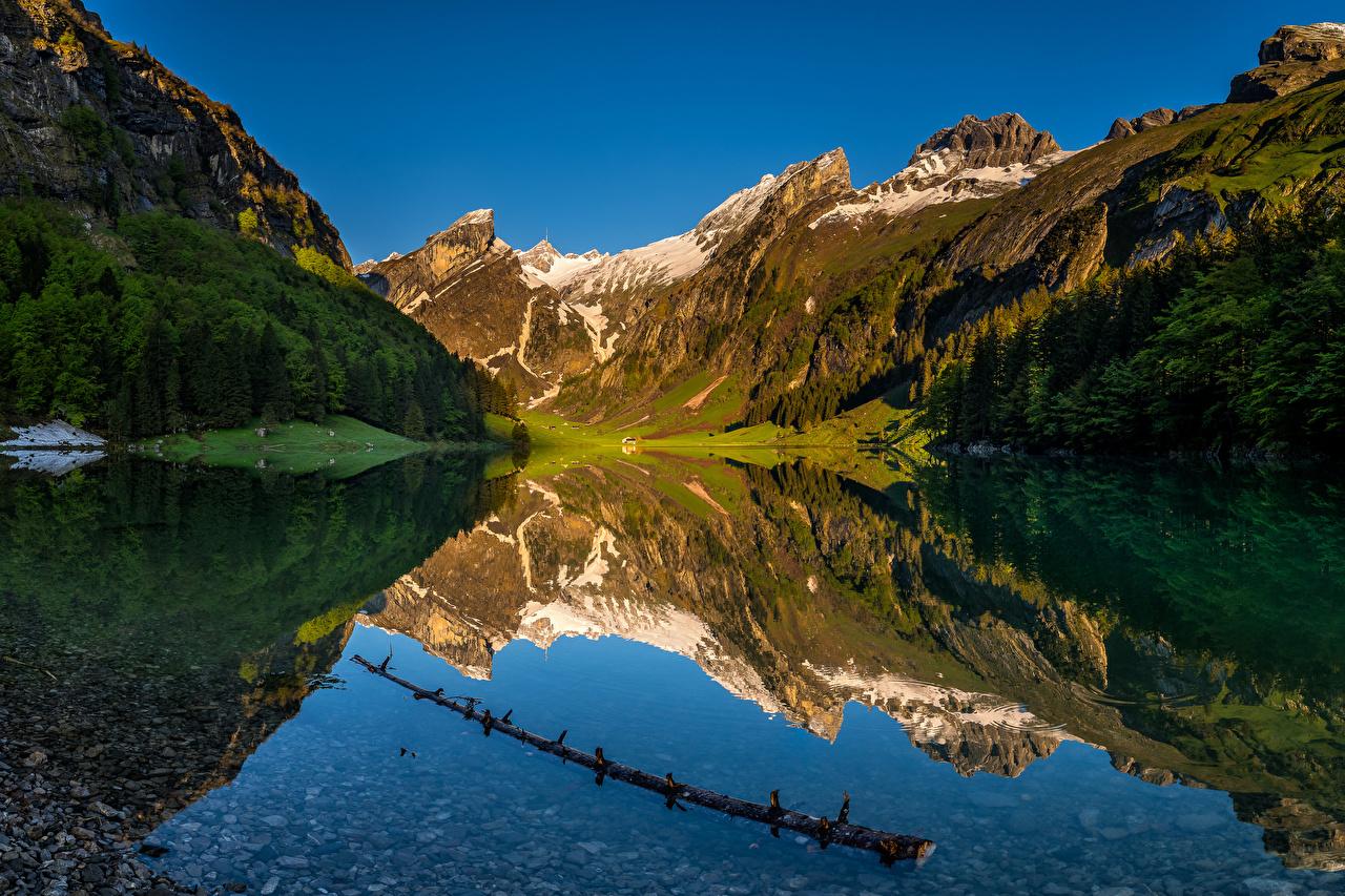 Bilder von Alpen Schweiz Seealpsee Natur Gebirge See Spiegelung Spiegelbild Berg spiegelt Reflexion