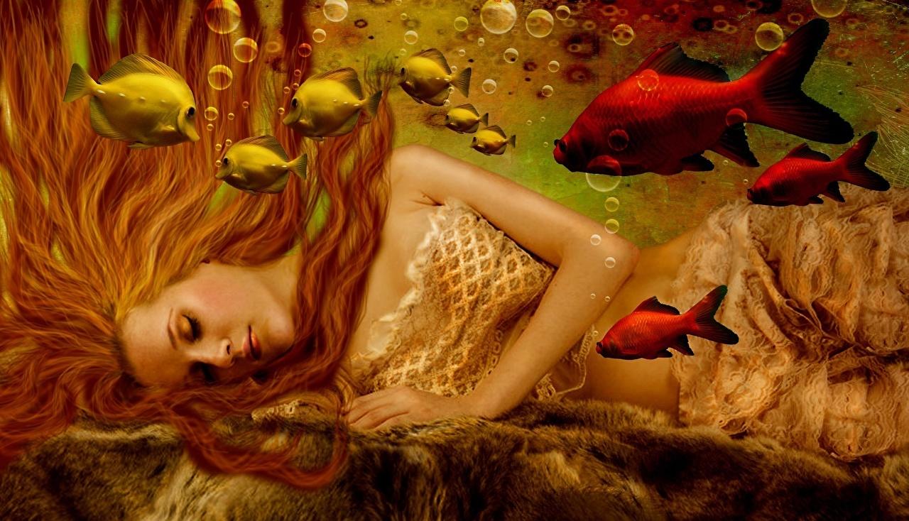 Picture Fish mermaids Underwater world Redhead girl Fantasy young woman Mermaid Girls female