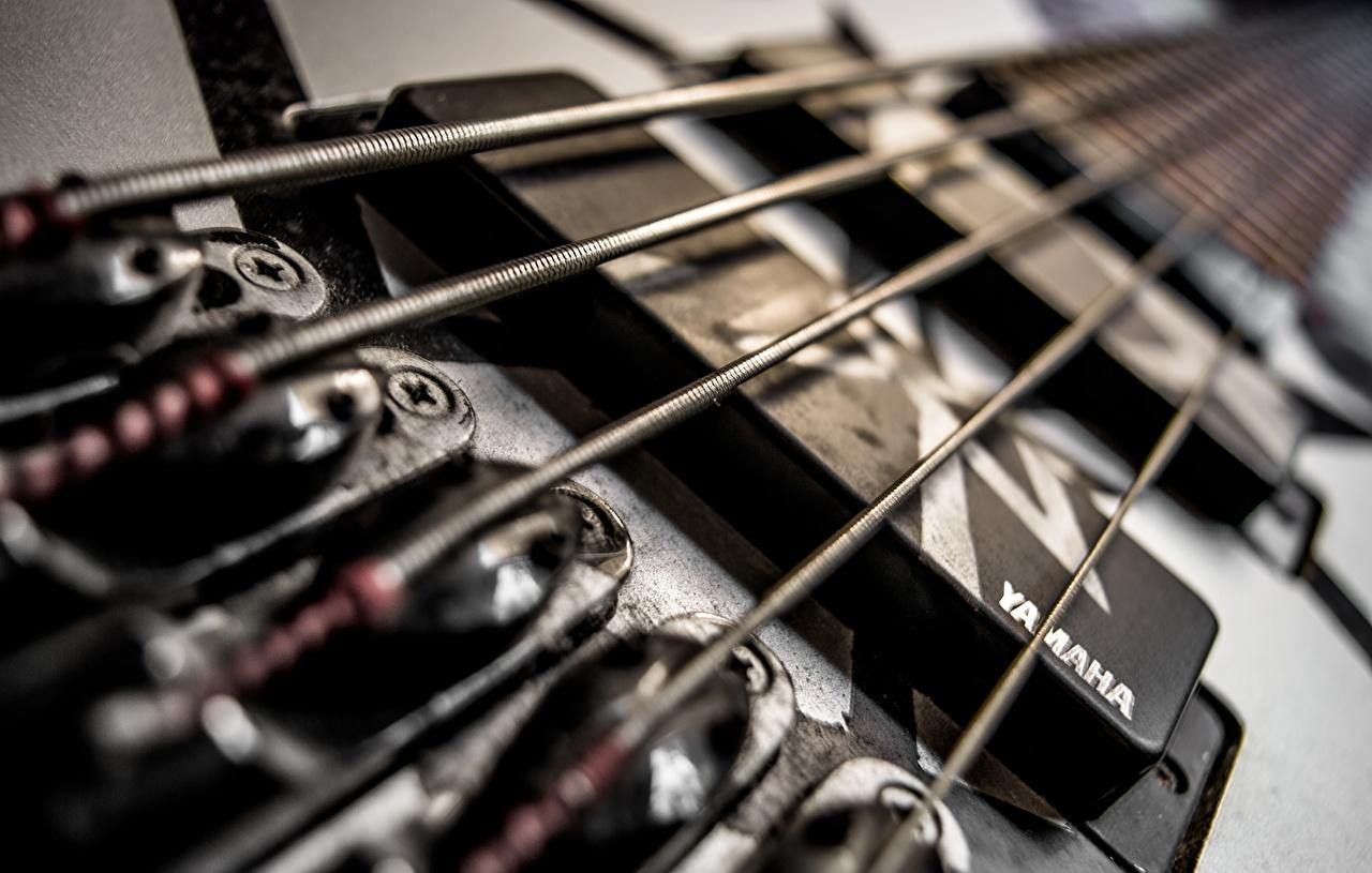 Wallpaper Guitar Macro Closeup Macro photography