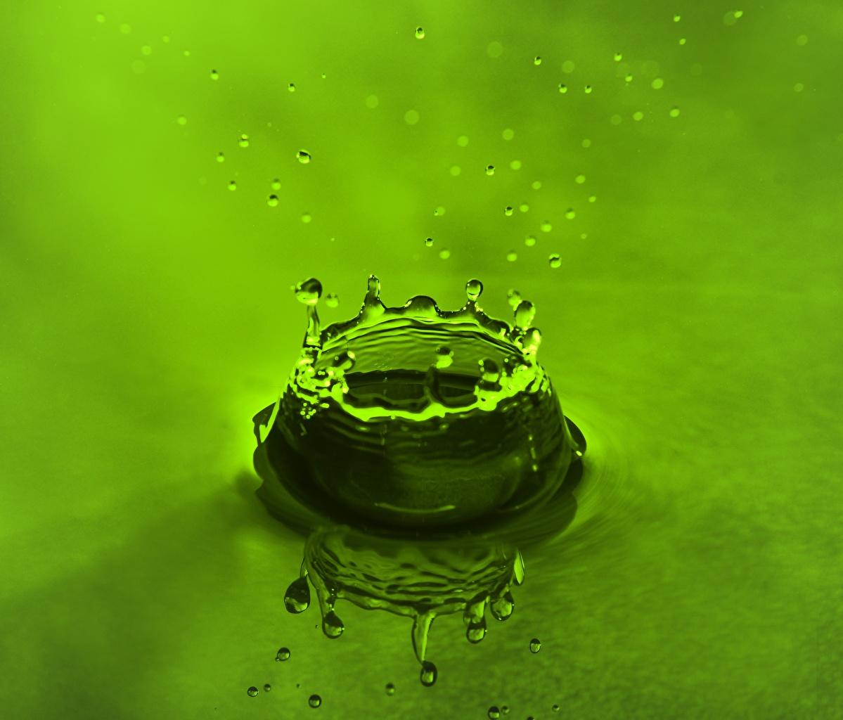 Fotos von Grün Tropfen spritzwasser Wasser Wasser spritzt