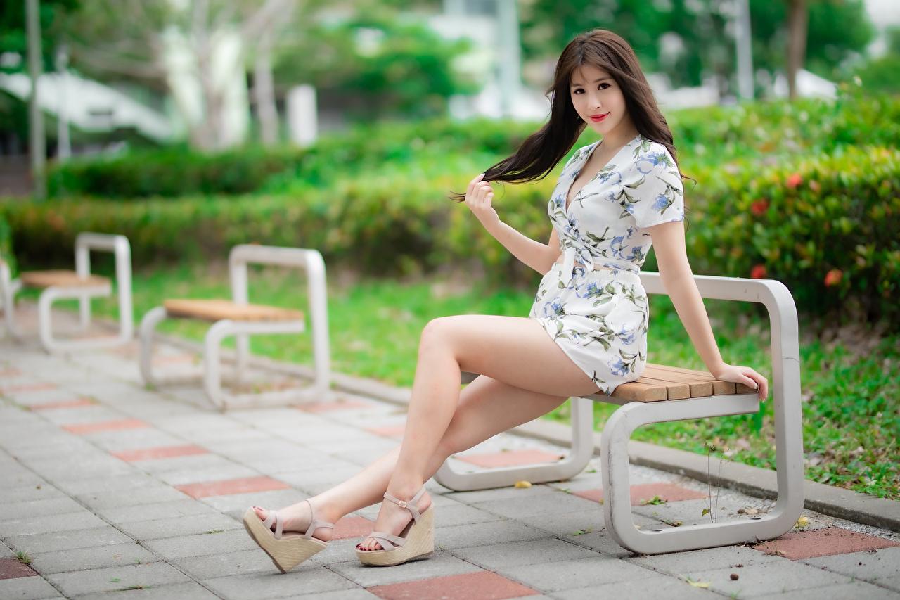 Fotos von Braune Haare Mädchens Bein asiatisches sitzt Bank (Möbel) Blick Kleid Braunhaarige junge frau junge Frauen Asiaten Asiatische sitzen Sitzend Starren