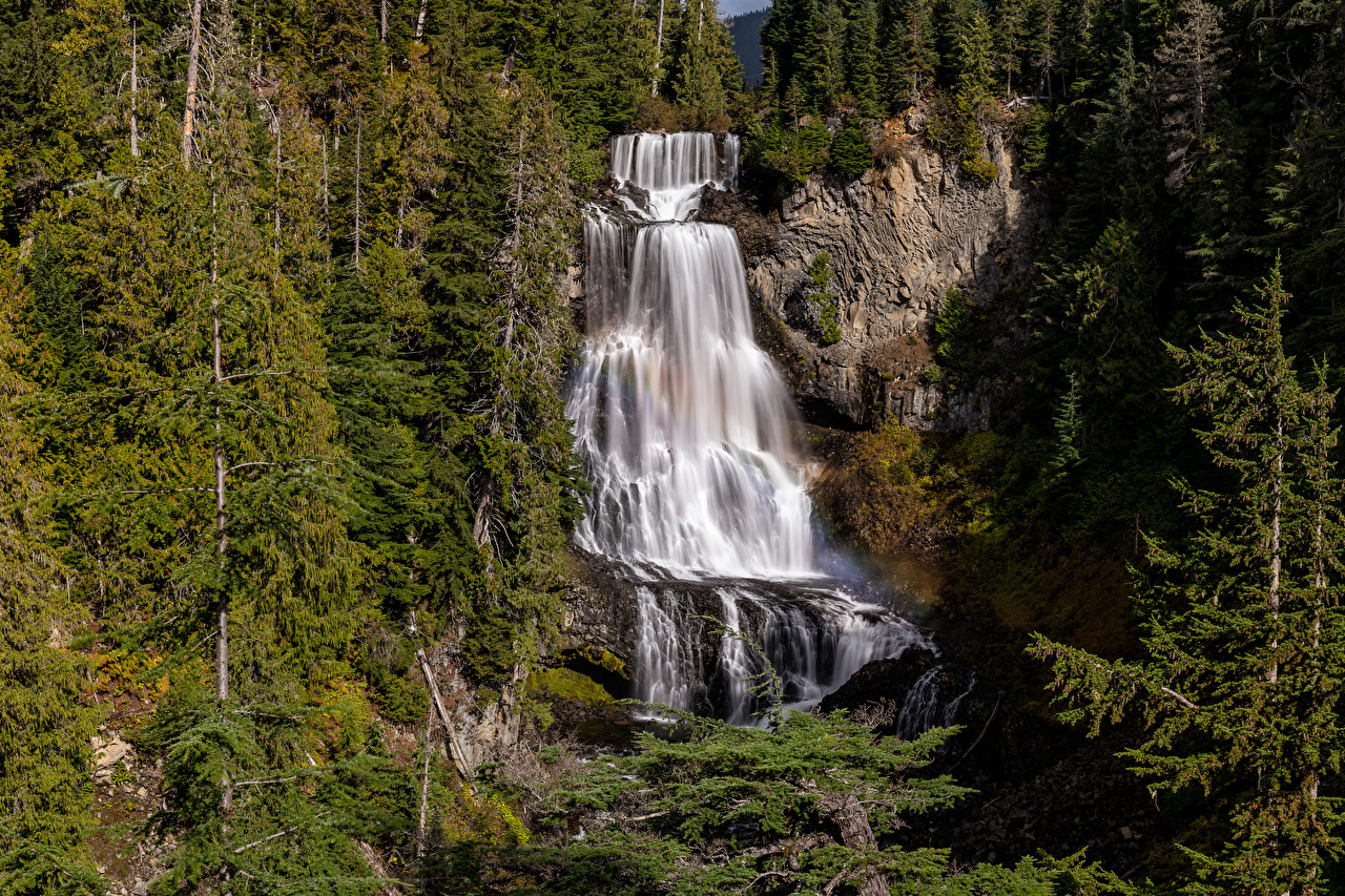 Pictures Canada Alexander Falls Crag Nature Waterfalls Trees Rock Cliff