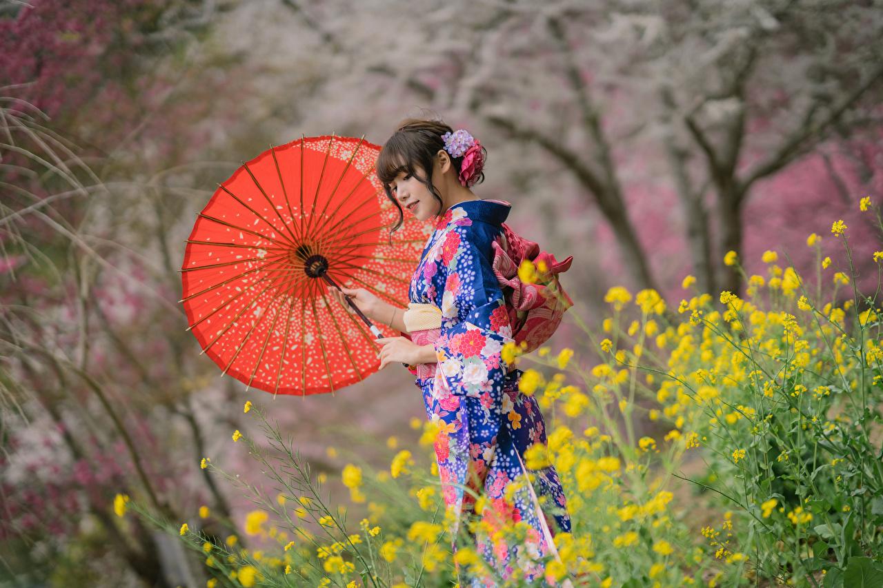 Fotos Kimono Mädchens Asiatische Regenschirm junge frau junge Frauen Asiaten asiatisches