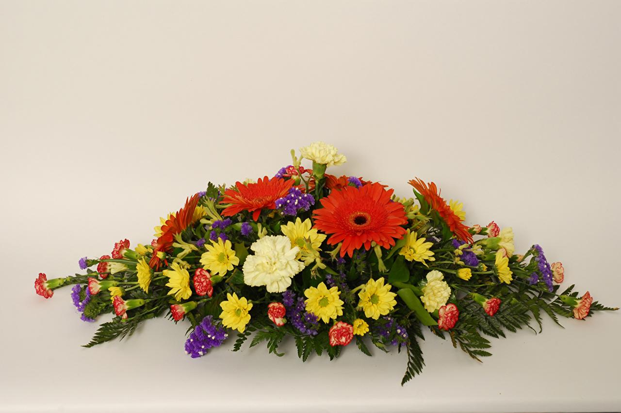 Bilder Sträuße Gerbera Blumen Nelken Chrysanthemen Farbigen hintergrund