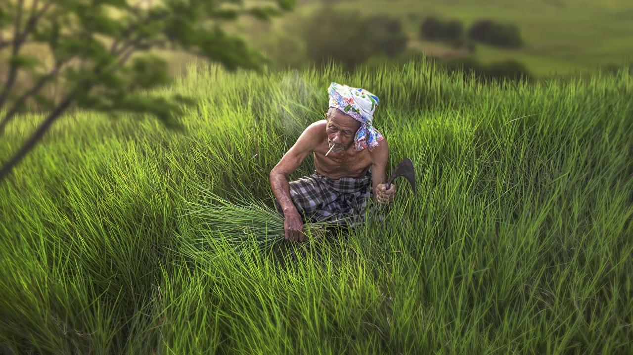 Bilder von Mann Zigarette Alter Mann Arbeit Felder Asiaten Hand Zigaretten arbeiten arbeitet Acker Asiatische asiatisches