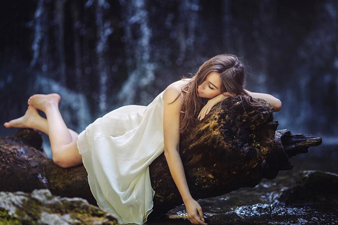 Immagini Ragazza capelli castani sonno giovani donne tronco di albero Vestito dormire ragazza Ragazze Sta dormendo addormentata giovane donna Tronco d'albero Abito