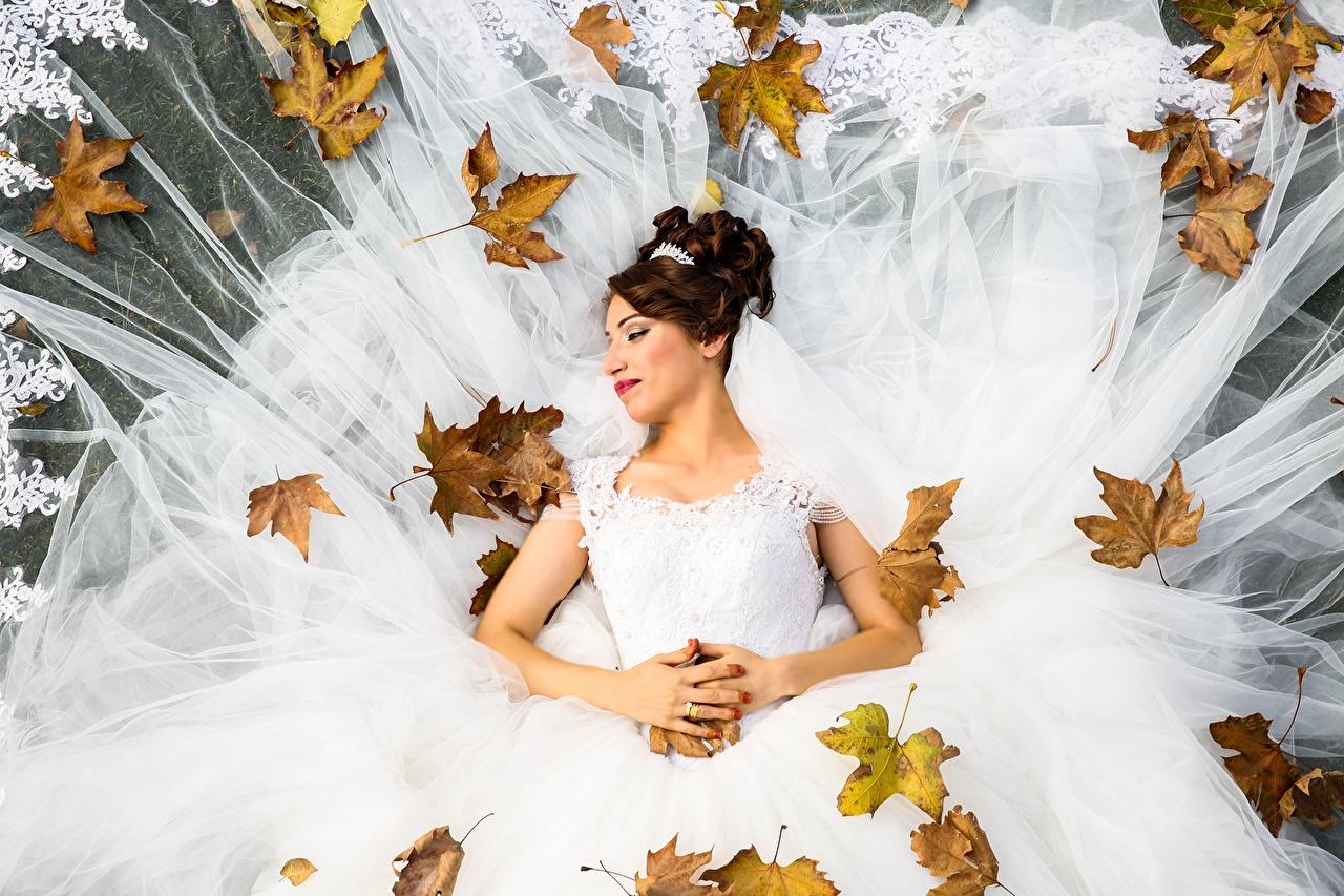 Foto Ehe Braut Blattwerk Braunhaarige Herbst junge frau Kleid Blatt Heirat Trauung bräute Hochzeit Hochzeiten Braune Haare Mädchens junge Frauen