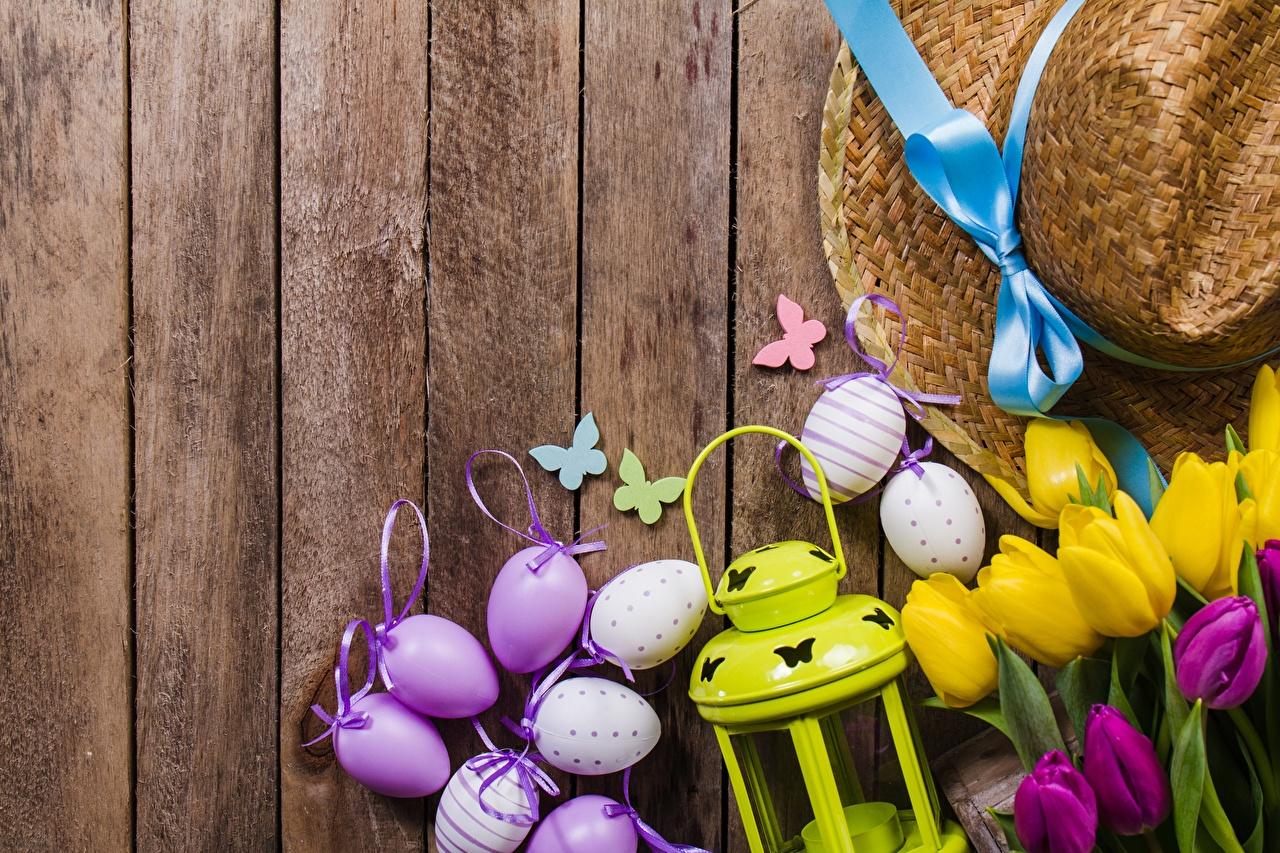 Bakgrunnsbilder Påske Egg Hatt tulipanslekta blomst Treplanker egg Tulipaner Blomster