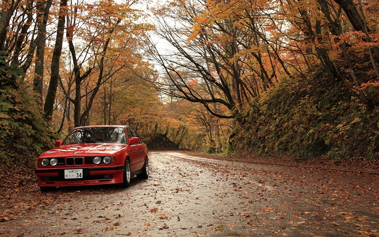 Images BMW Leaf Red Autumn Roads automobile Seasons Foliage Cars auto