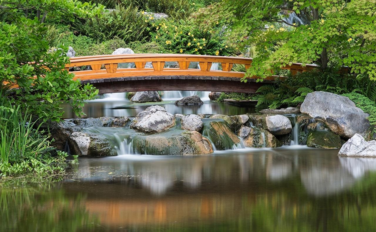Photo Vienna Austria Setagaya Japanese bridge Pond park Gardens Cities Bridges Parks