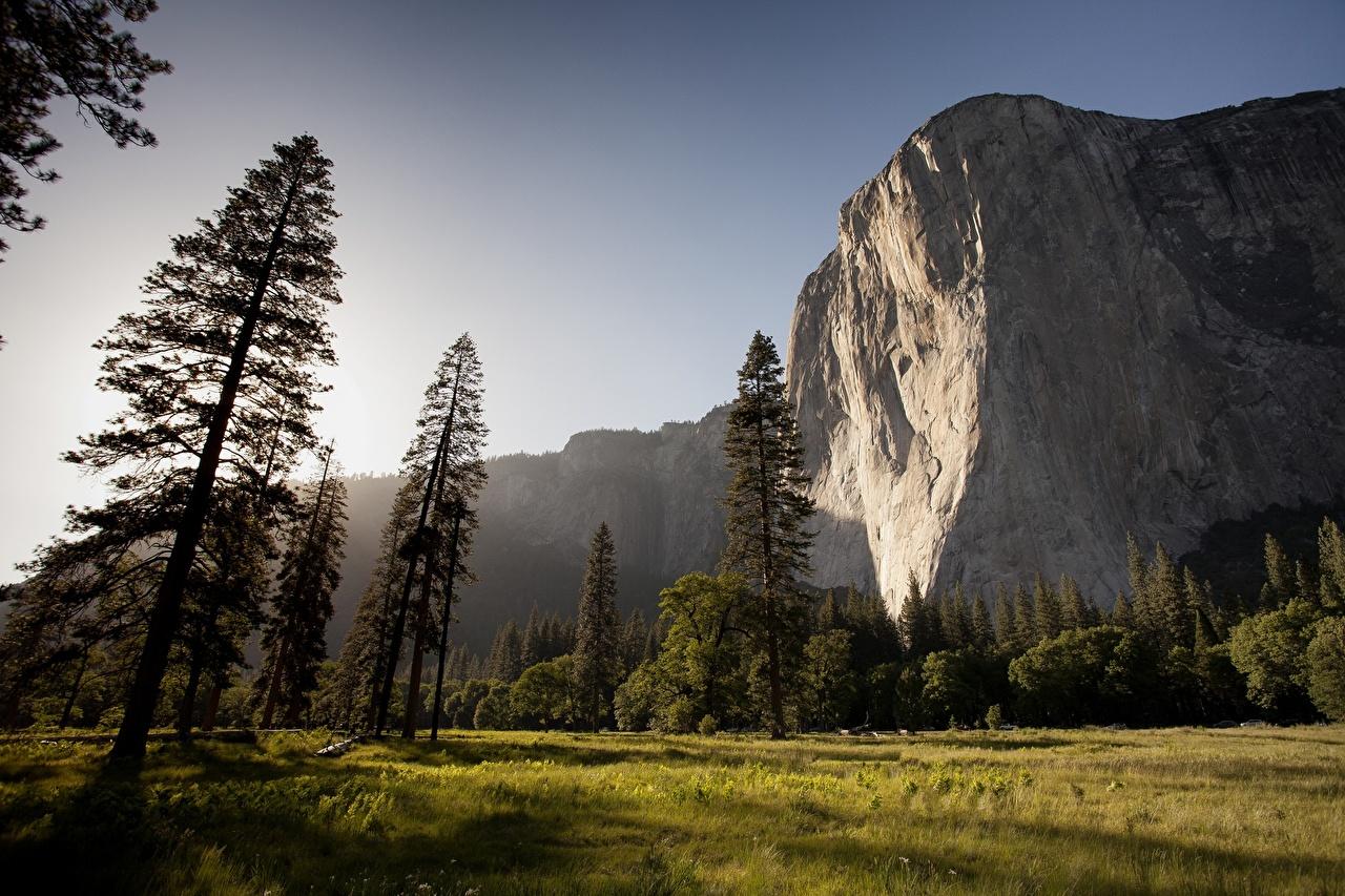 Wallpaper Yosemite USA mount El Capitan Cliff Nature mountain park Grass Trees Rock Crag Mountains Parks