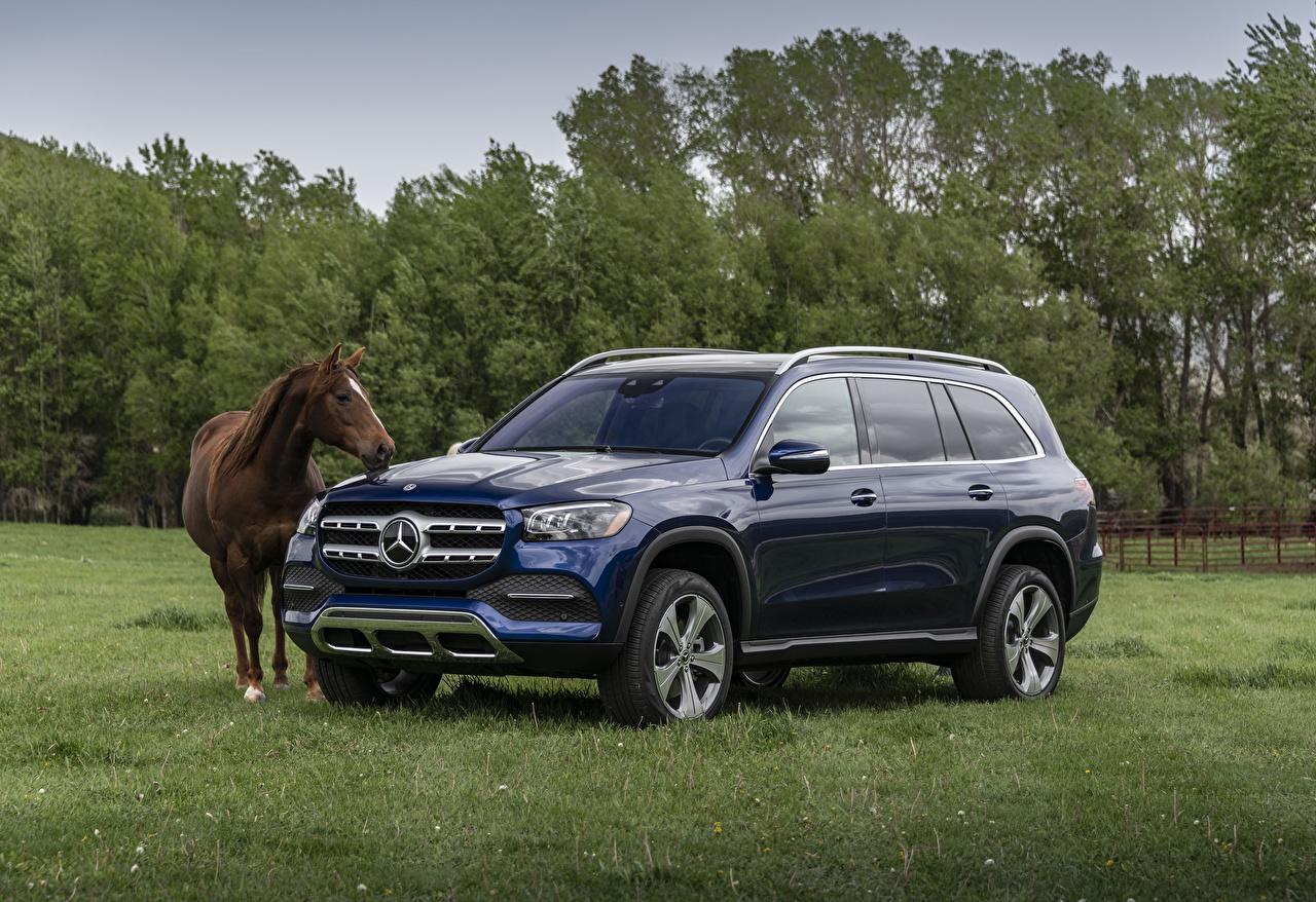 Mercedes-Benz_Horses_2020_GLS_450_4MATIC_Blue_565626_1280x878.jpg