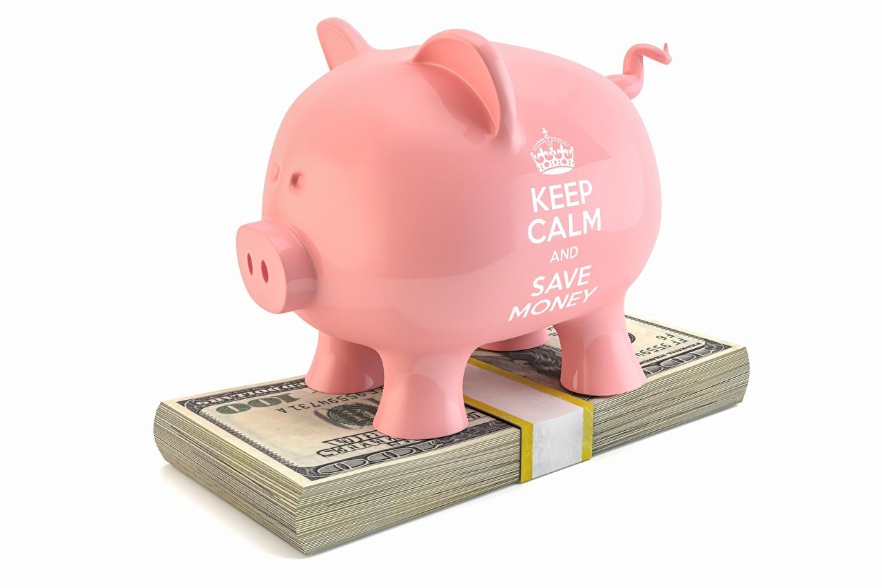 Fotos Geld Dollars Papiergeld Sparschwein Englisch 3D-Grafik Weiß Banknoten Geldscheine