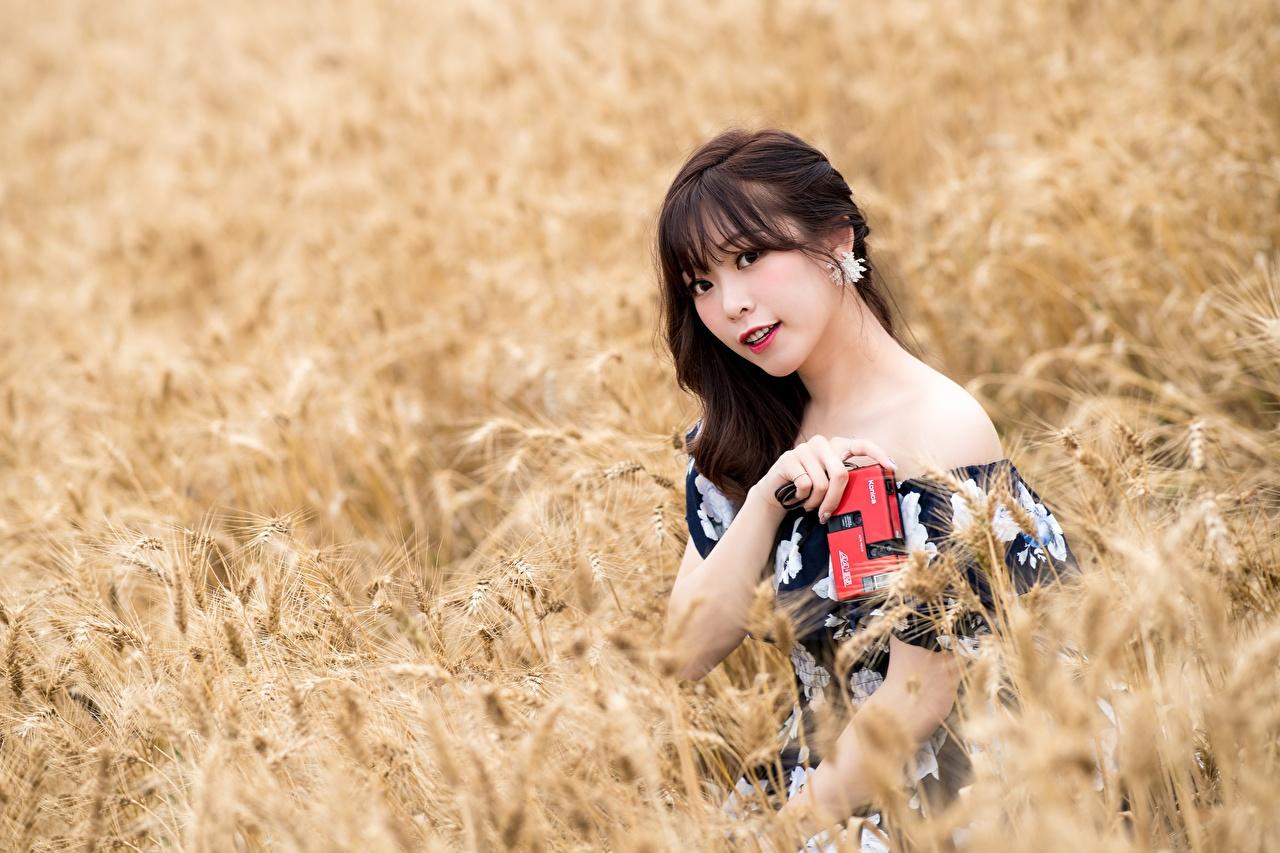 Fotos von Brünette unscharfer Hintergrund junge Frauen Felder Asiatische Blick Bokeh Mädchens junge frau Acker Asiaten asiatisches Starren