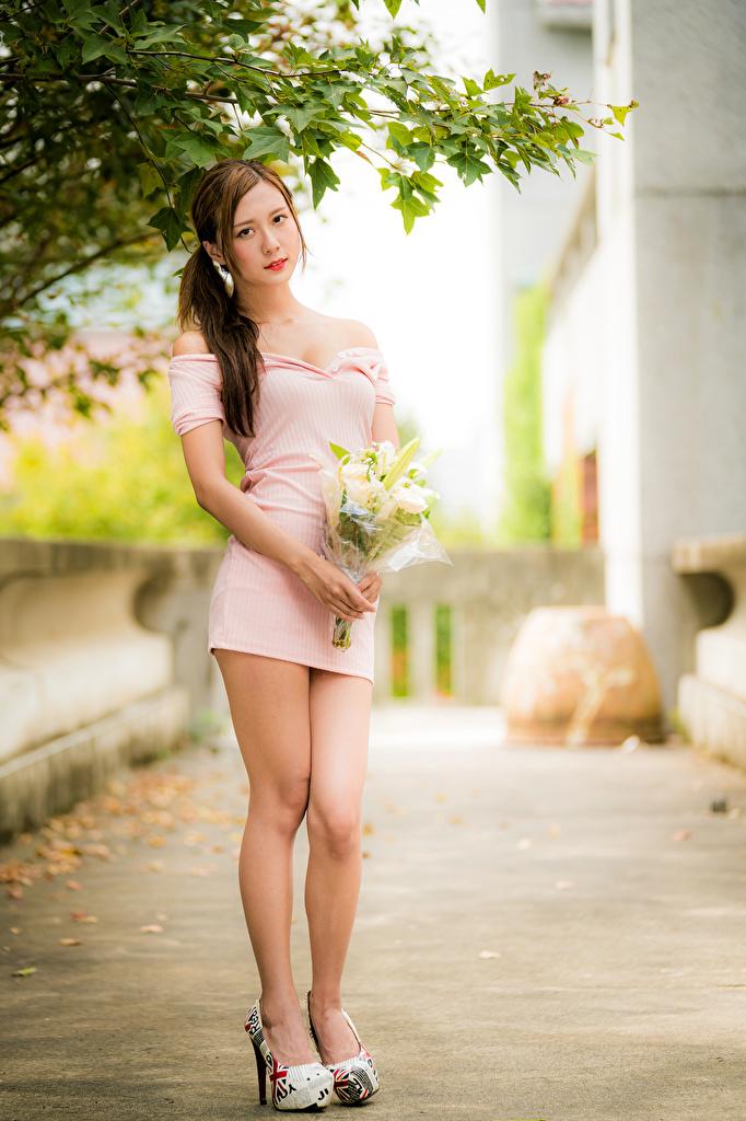 Foto Bokeh posiert Blumensträuße Mädchens Bein Asiatische Starren Kleid  für Handy unscharfer Hintergrund Pose Sträuße junge frau junge Frauen Asiaten asiatisches Blick