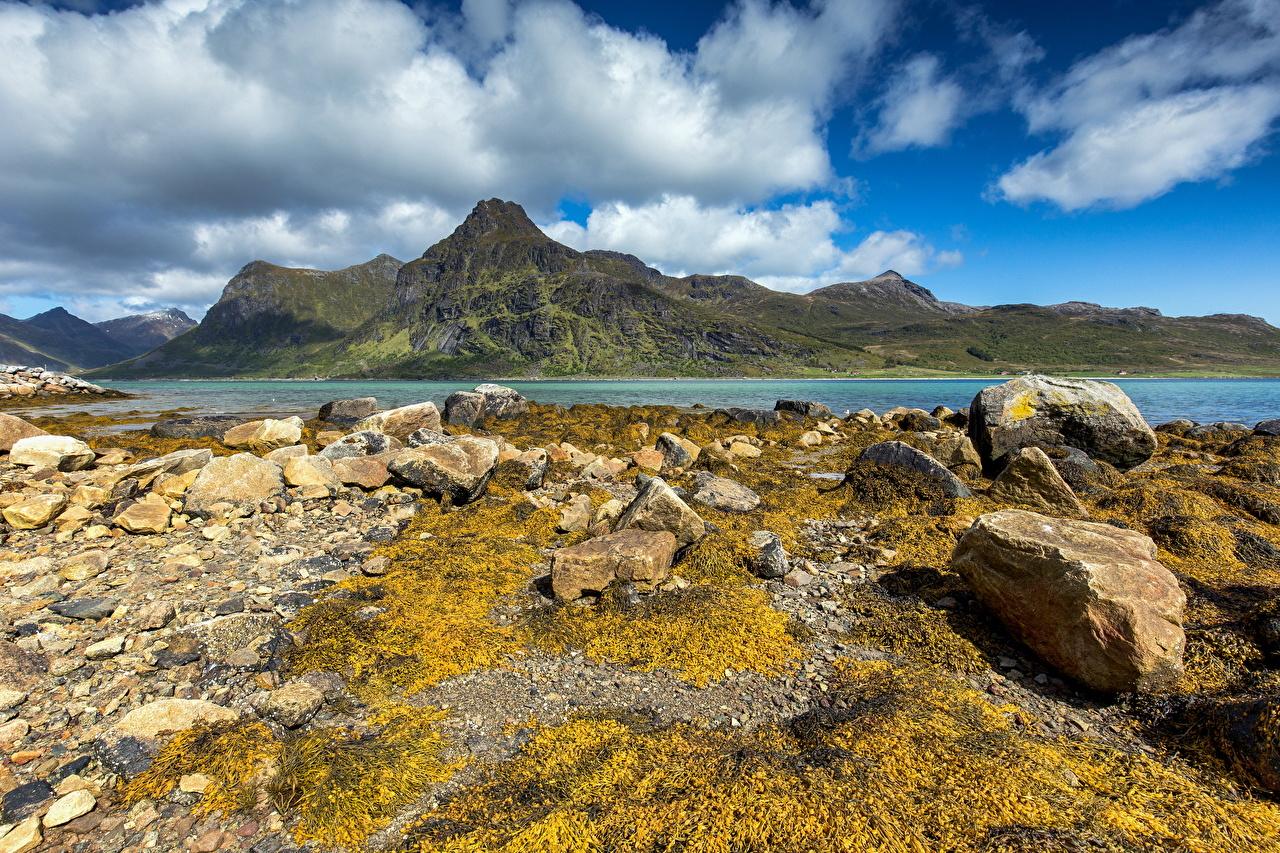Fotos von Lofoten Norwegen Natur Gebirge Stein Wolke Berg Steine