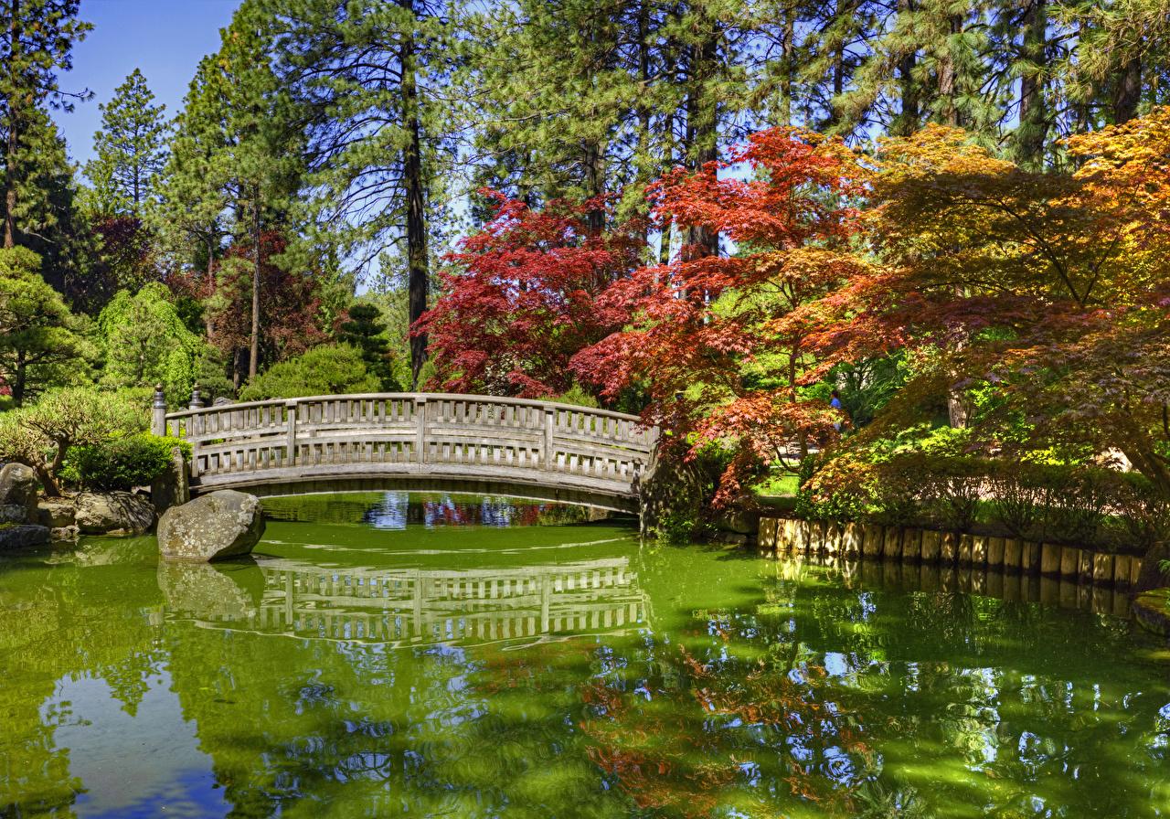 Fotos von Washington USA Japanese Garden Spokane HDRI Natur Brücken Park Teich Steine Bäume Vereinigte Staaten HDR