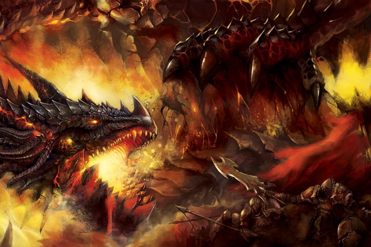 Fotos von Drache Krieger Fantasy Schlacht Kopf Drachen