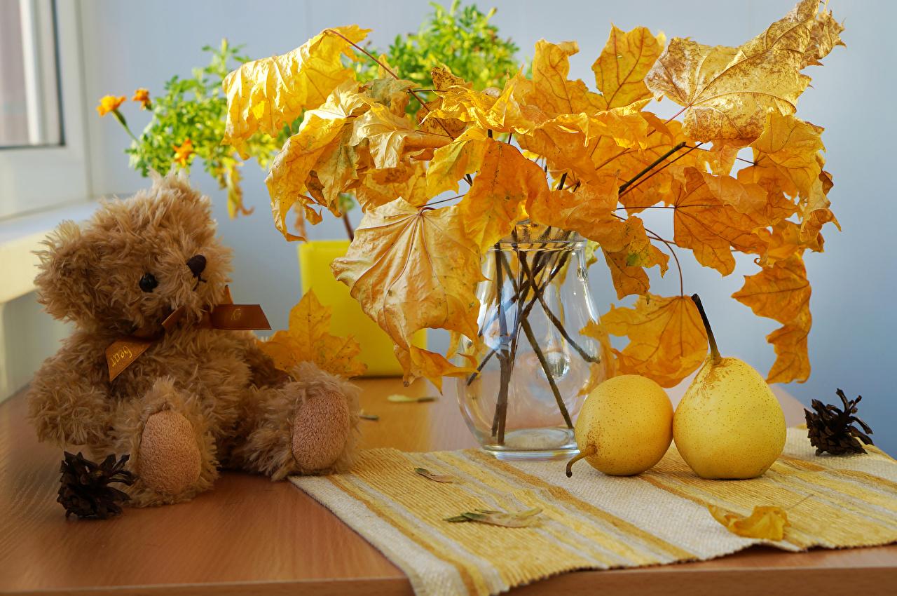 Desktop Hintergrundbilder Blattwerk Natur Herbst Birnen Knuddelbär Ast Vase Stillleben Blatt Teddy Teddybär