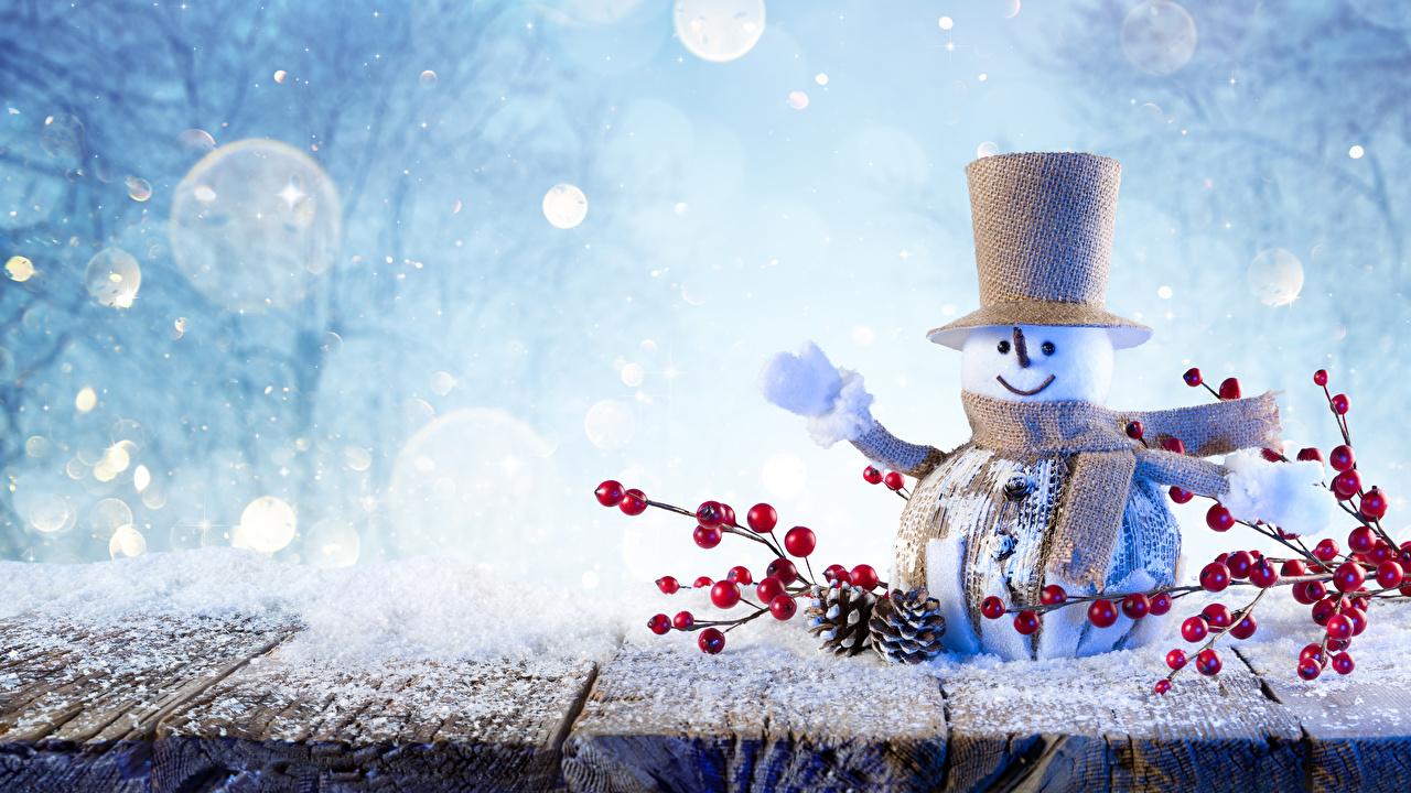 Bilder von Schal Natur Winter Der Hut Schnee Schneemänner Ast Zapfen