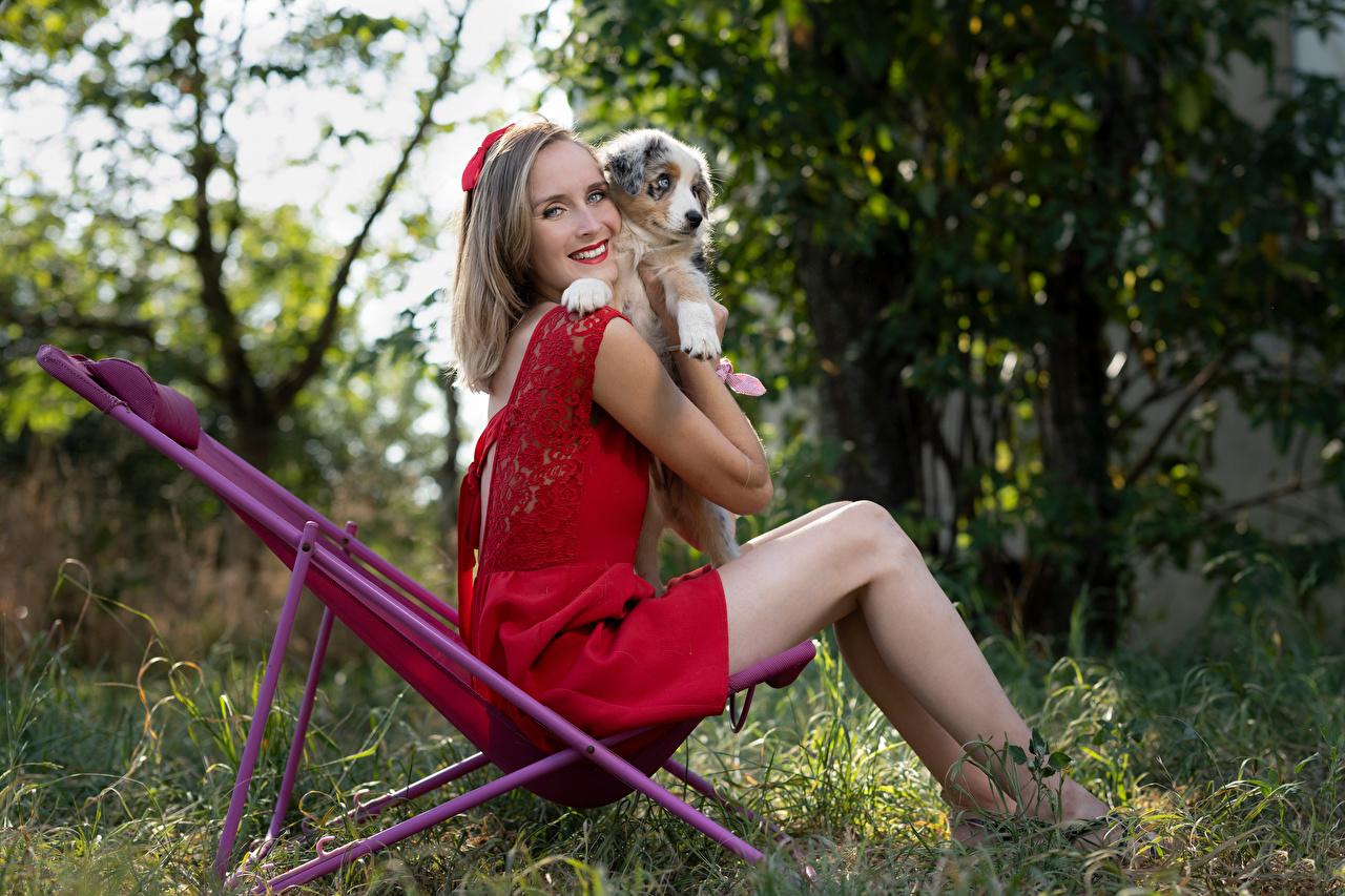 Marion and Sissi Cabelo loiro Meninas Sorrir Vestido Pernas Cachorrinho jovem mulher, mulheres jovens, moça, animalia, um animal, filhotes, filhote de cachorro Meninas Animalia