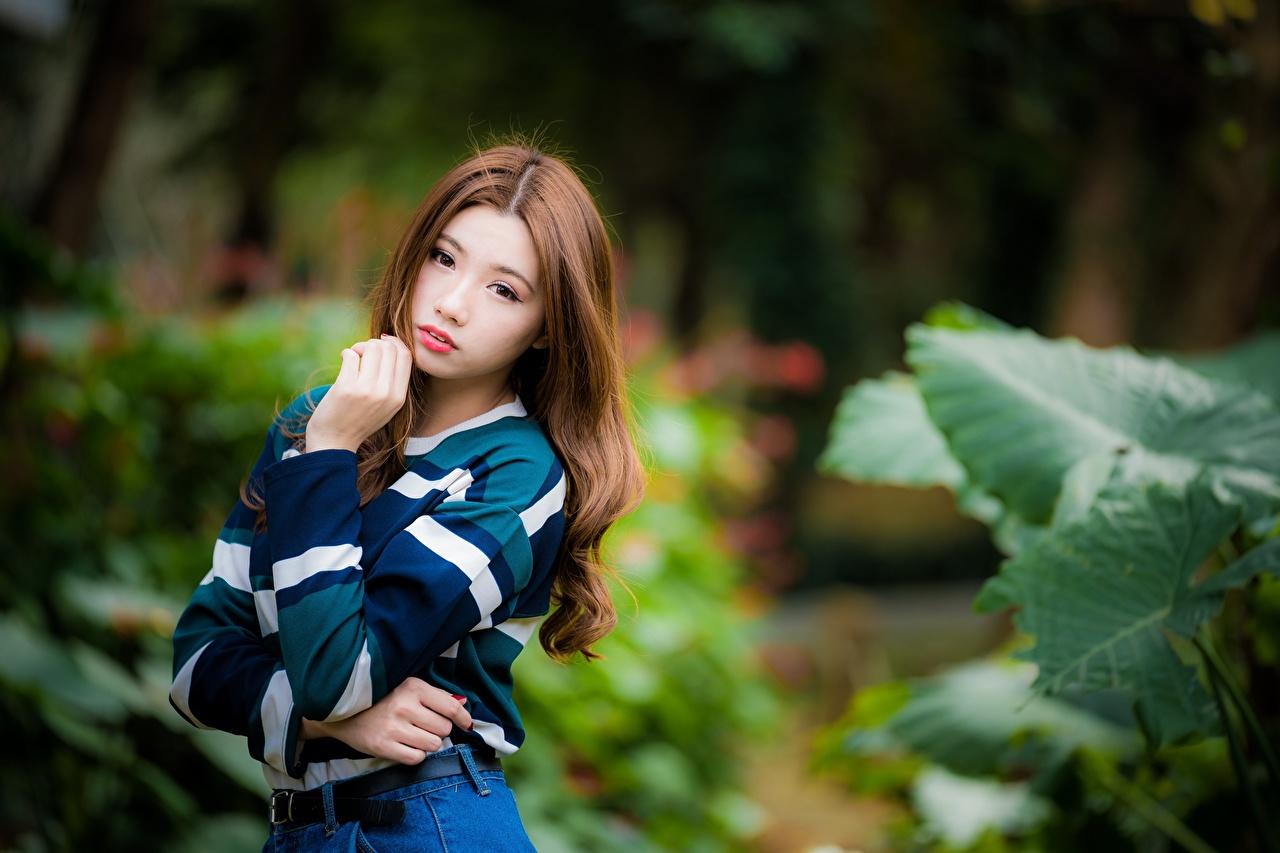 Bilder von Braune Haare unscharfer Hintergrund posiert Mädchens Asiaten Hand Blick Braunhaarige Bokeh Pose junge frau junge Frauen Asiatische asiatisches Starren