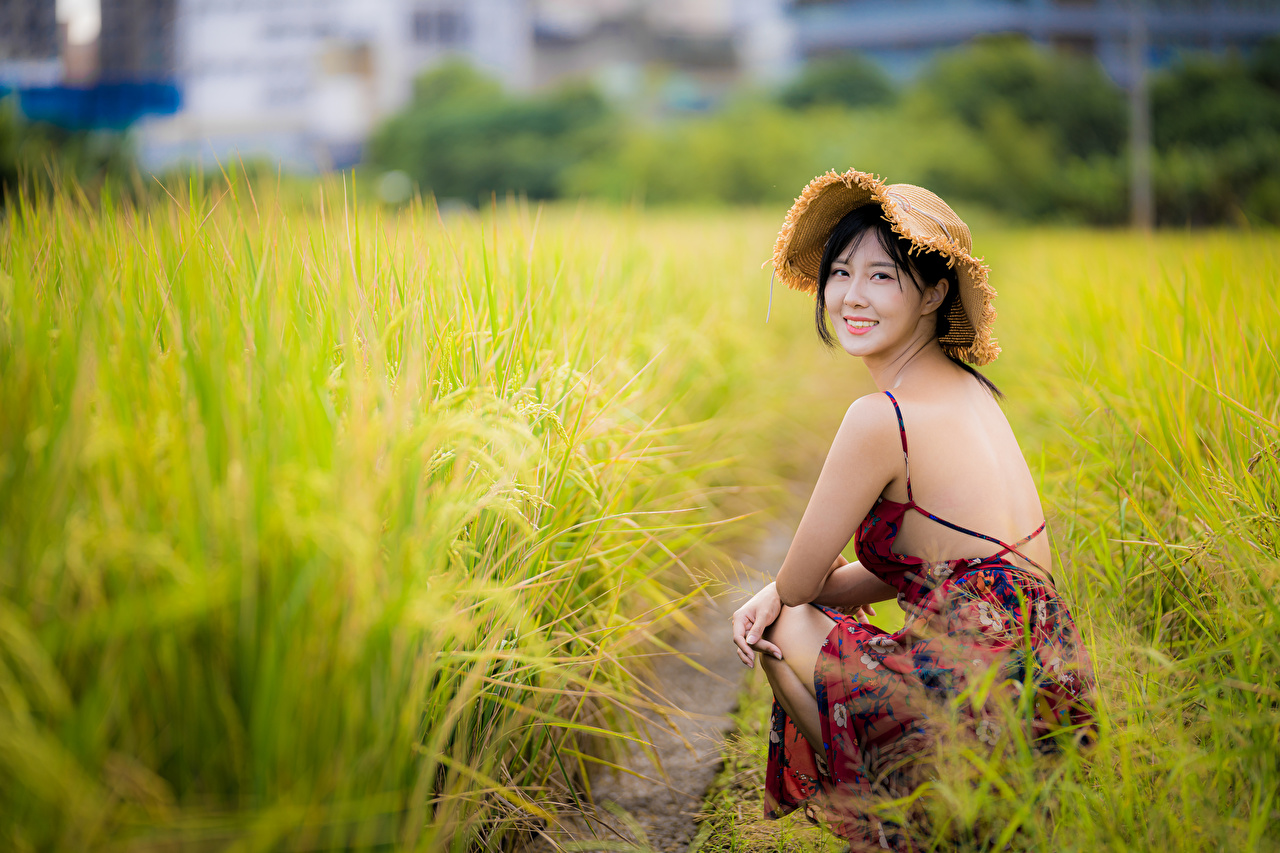 Image Brunette girl blurred background Hat Girls Asiatic Grass Sitting Staring Dress Bokeh female young woman Asian sit Glance gown frock