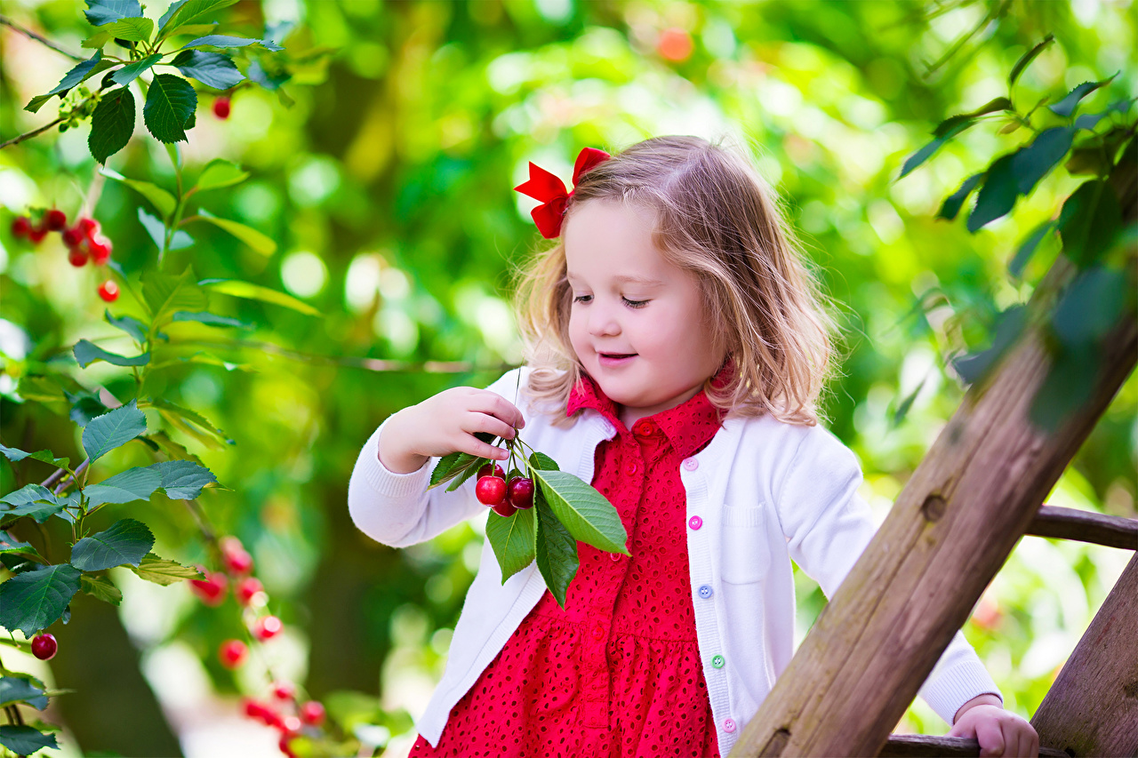 Pictures little girls smile children cherry - Cute little girl pic hd ...